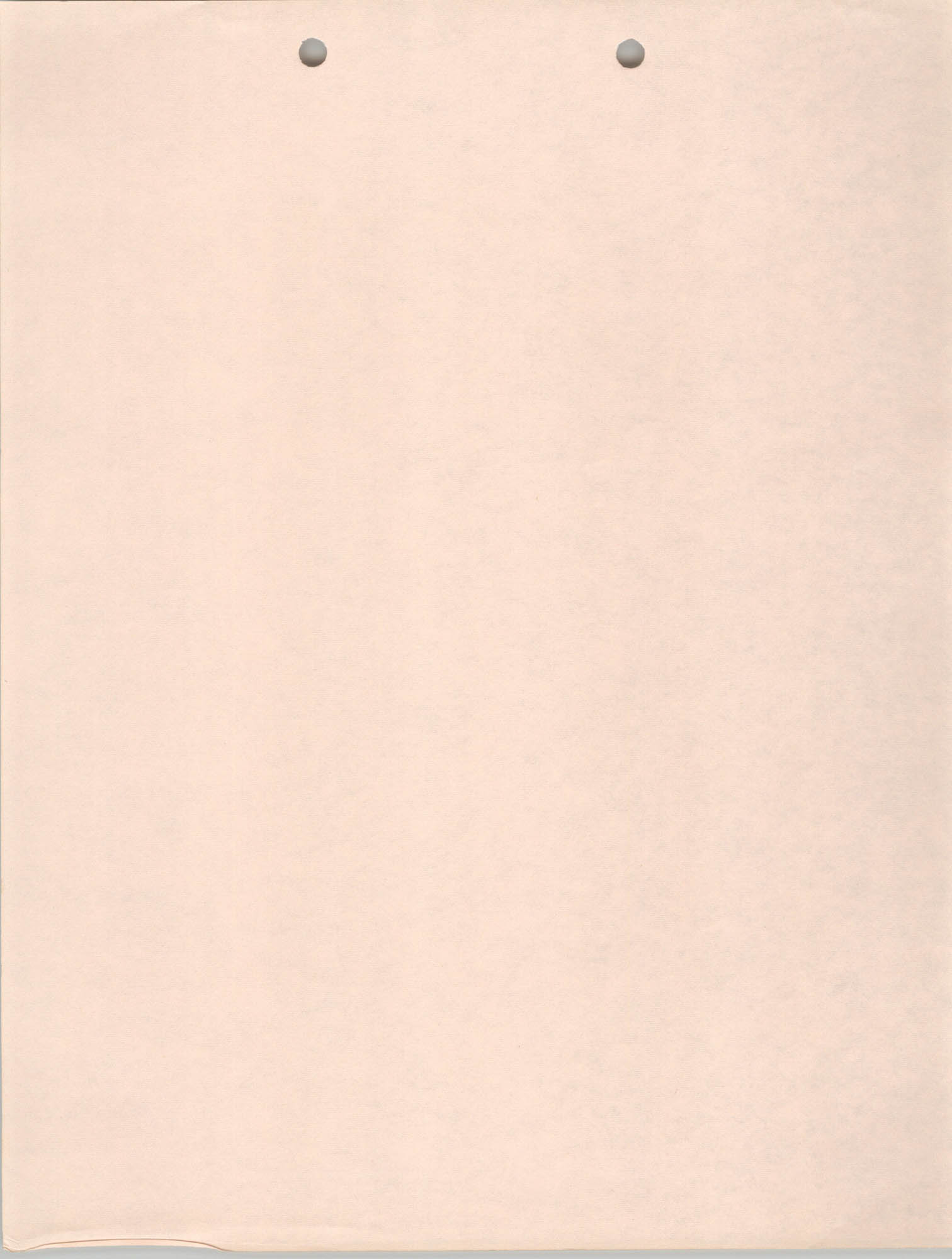 Blank Pink Page
