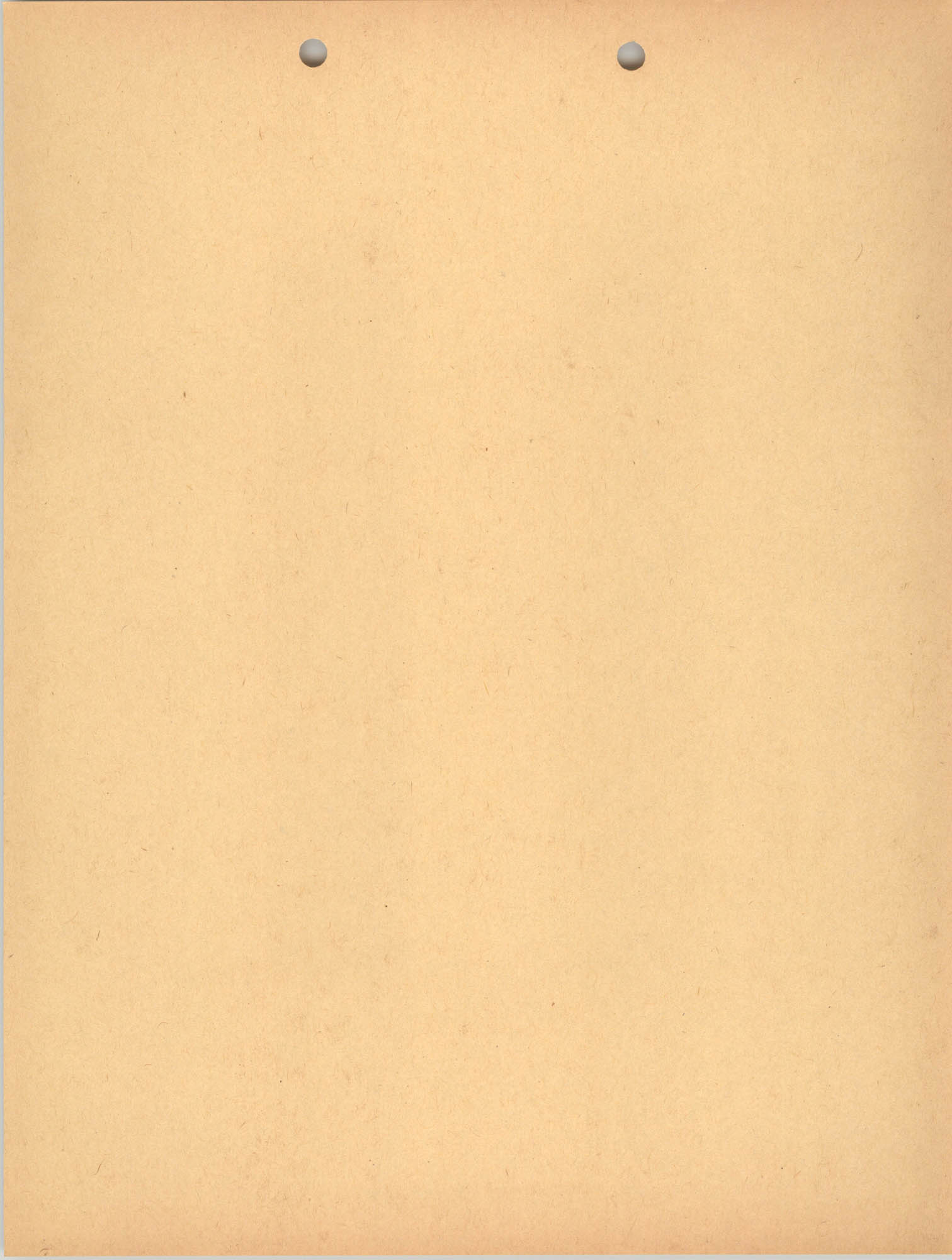Blank Orange Page