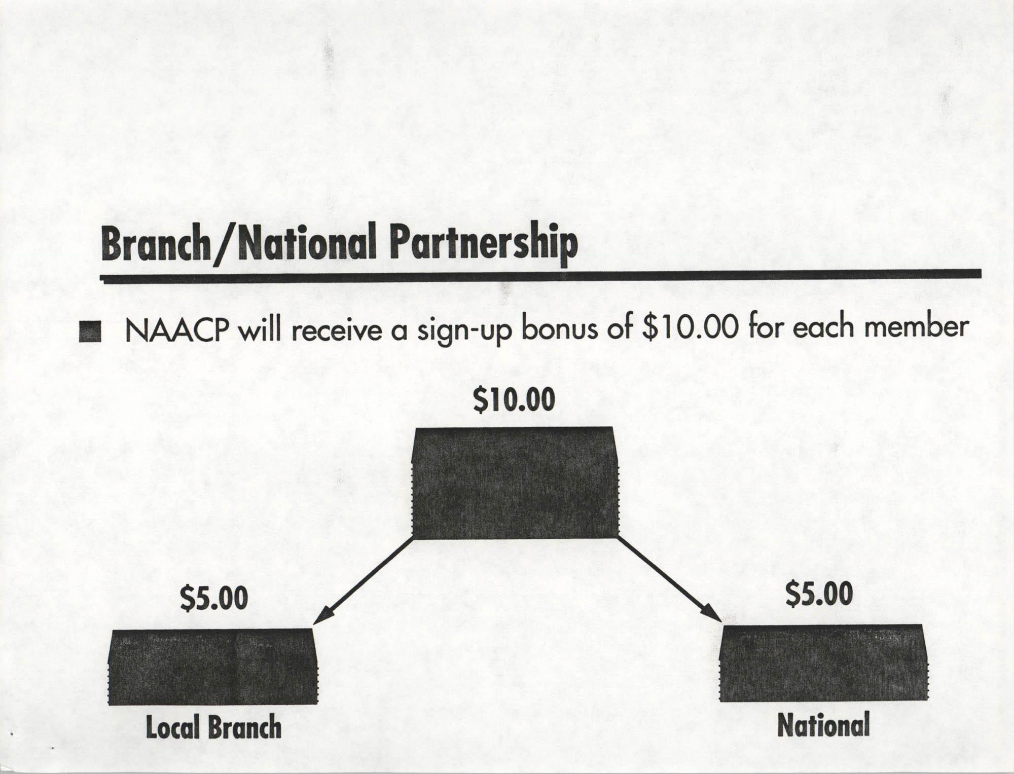 Economic Empowerment Plan, Page 8
