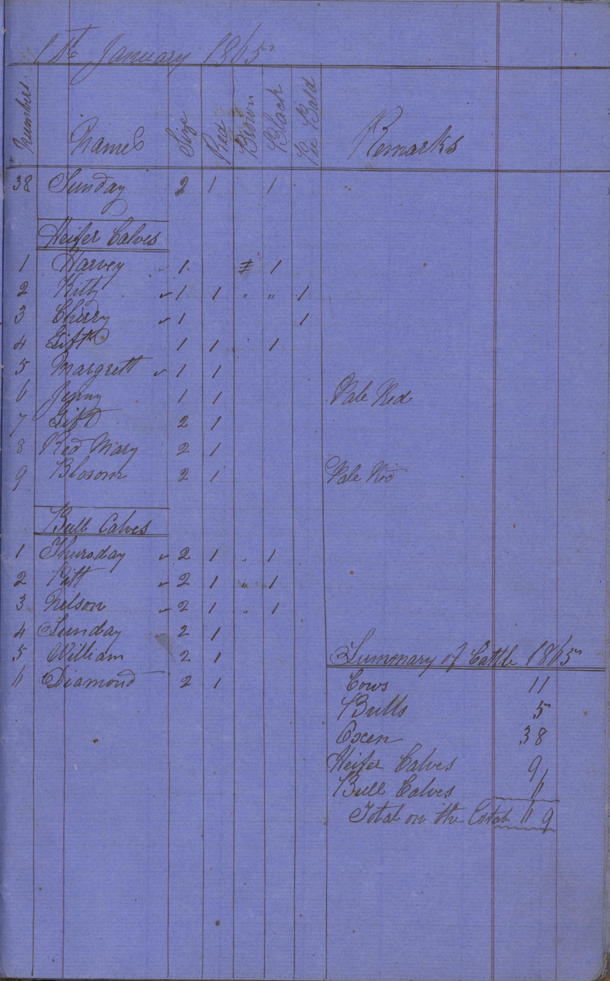 Page 11 Newton Plantation Day Book 1865