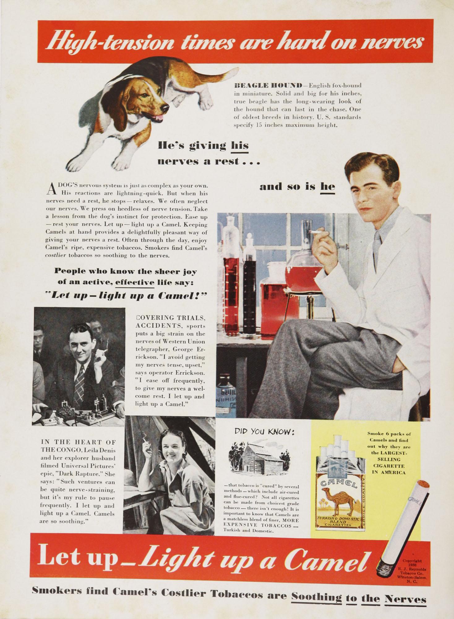 College of Charleston Magazine, 1938-1939, Vol. XXXXII No. 1, advertisement