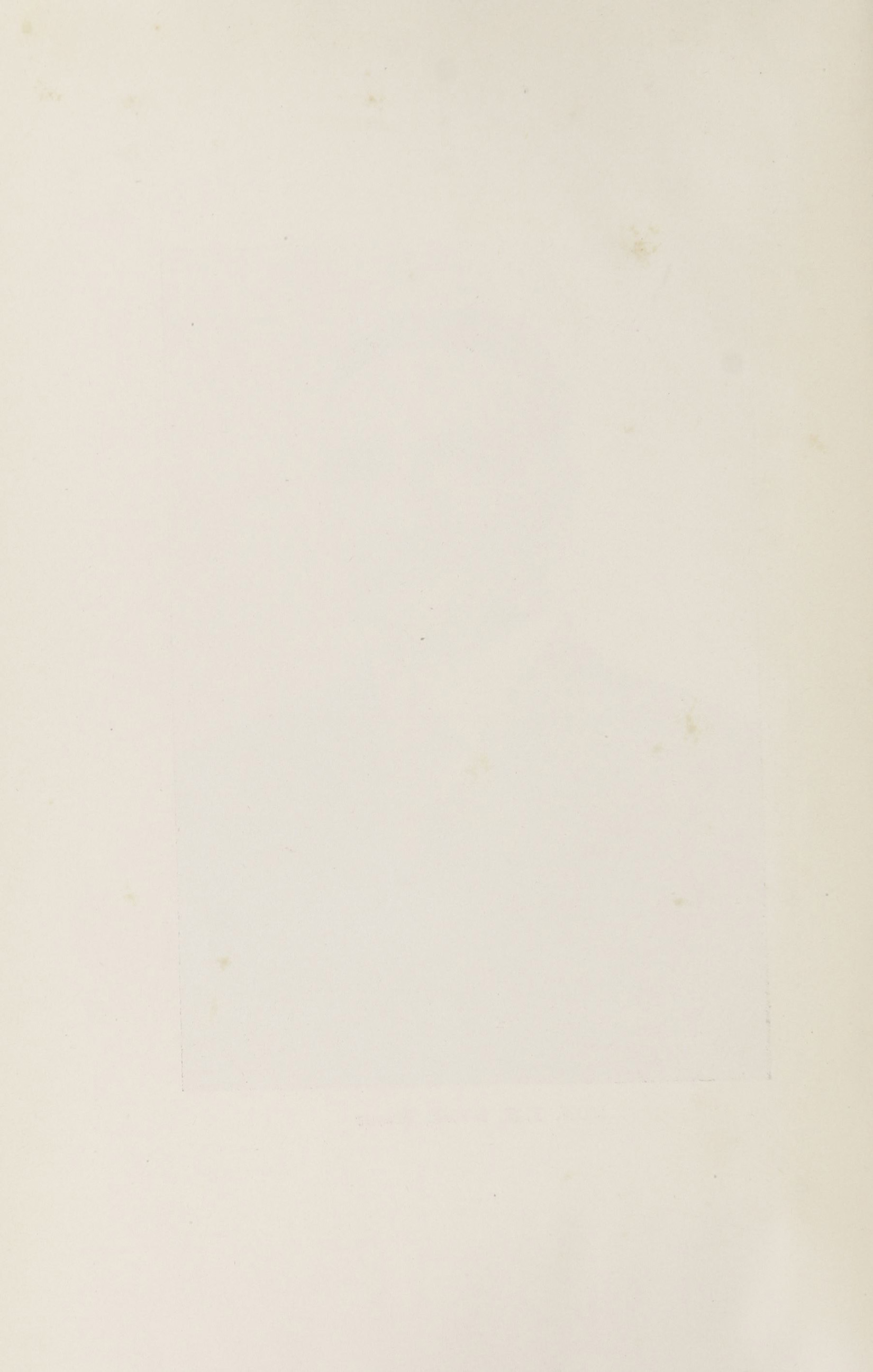 Charleston Yearbook, 1916, blank back of photograph