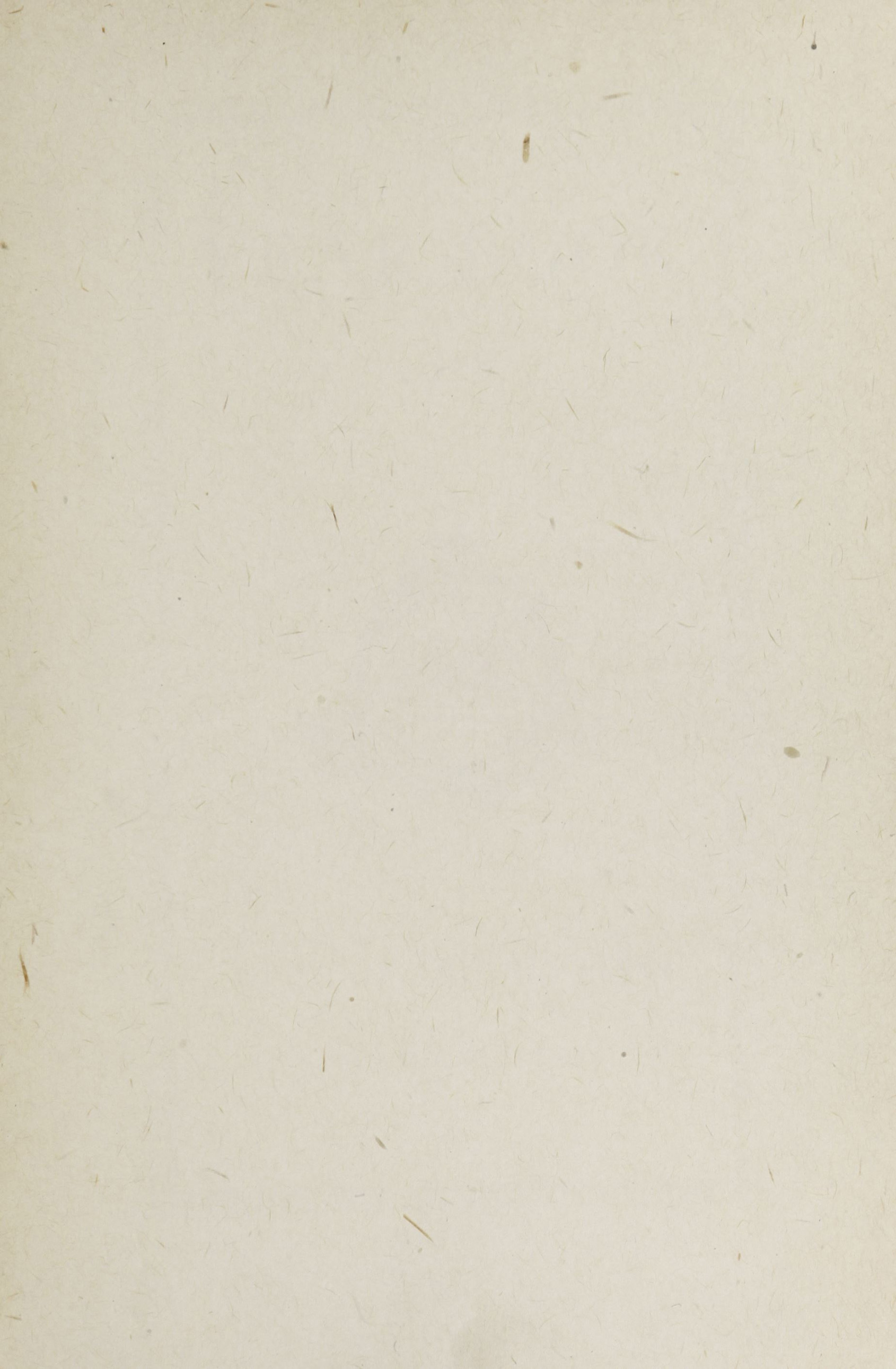Charleston Yearbook, 1918, blank page