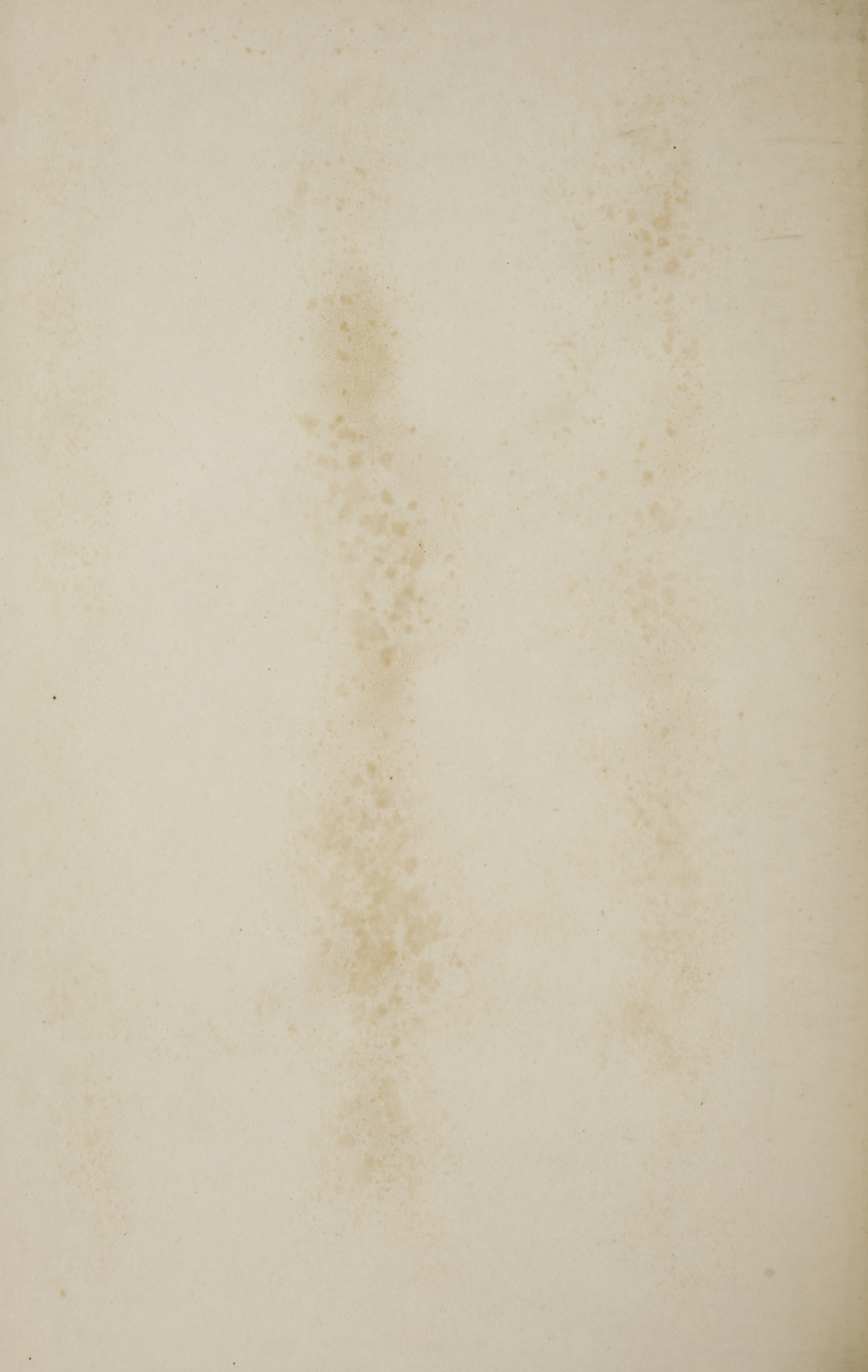 Charleston Yearbook, 1919, blank page