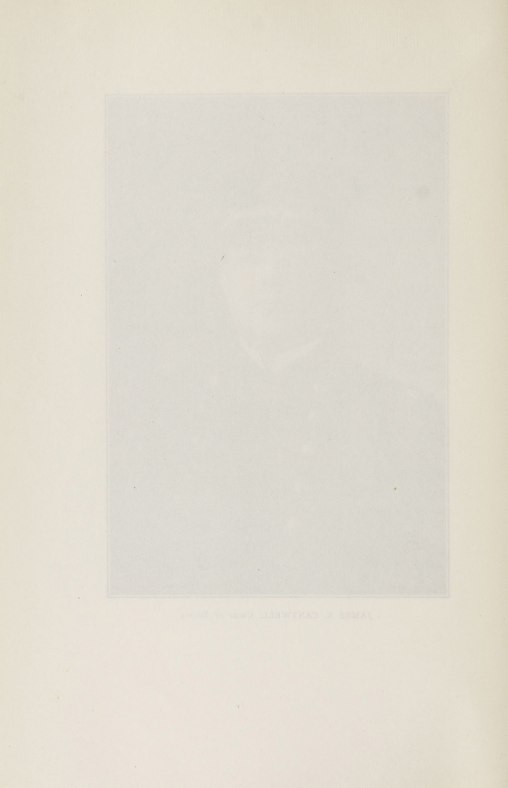 Charleston Yearbook, 1920, page 304