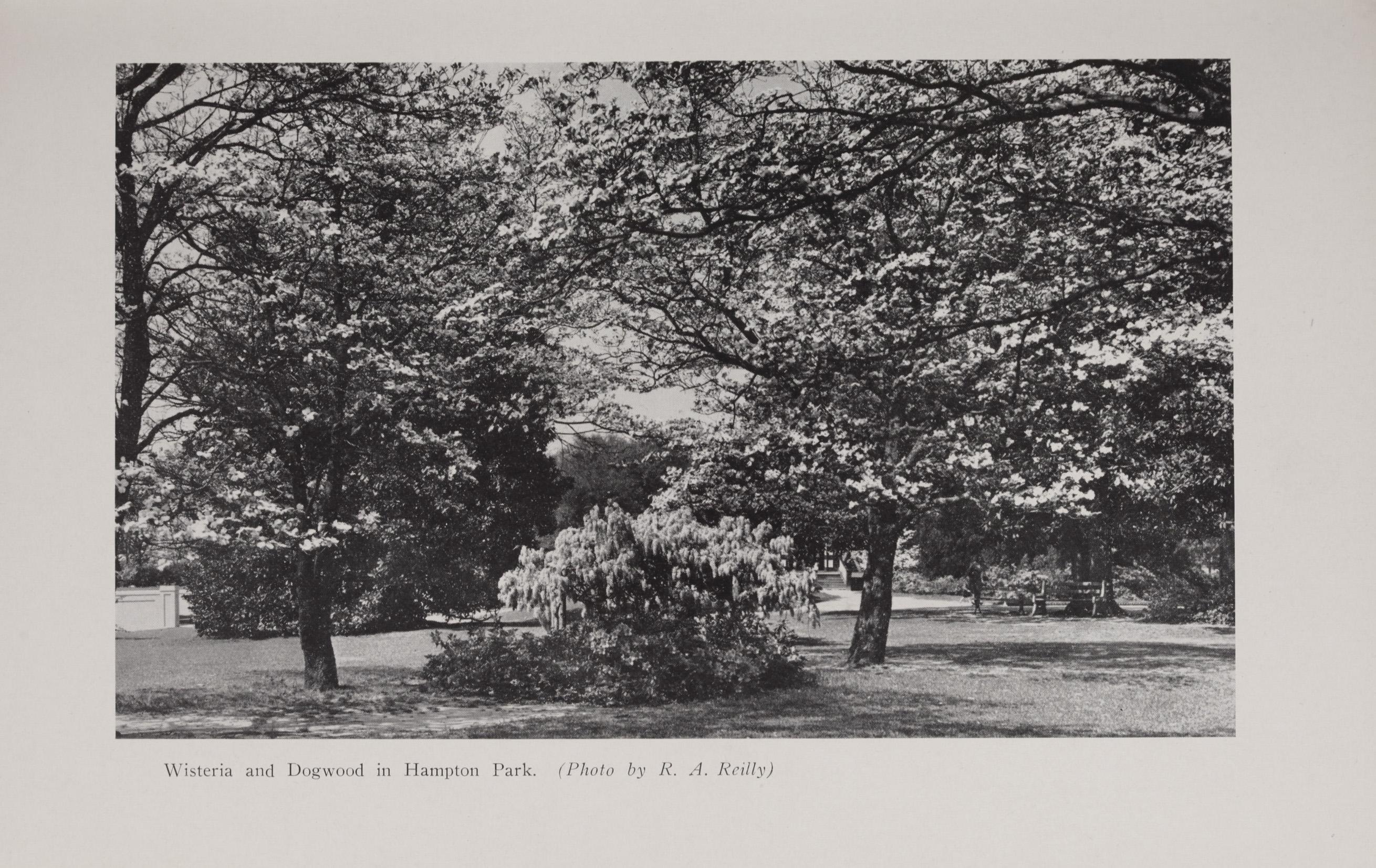 Charleston Yearbook, 1940, photograph