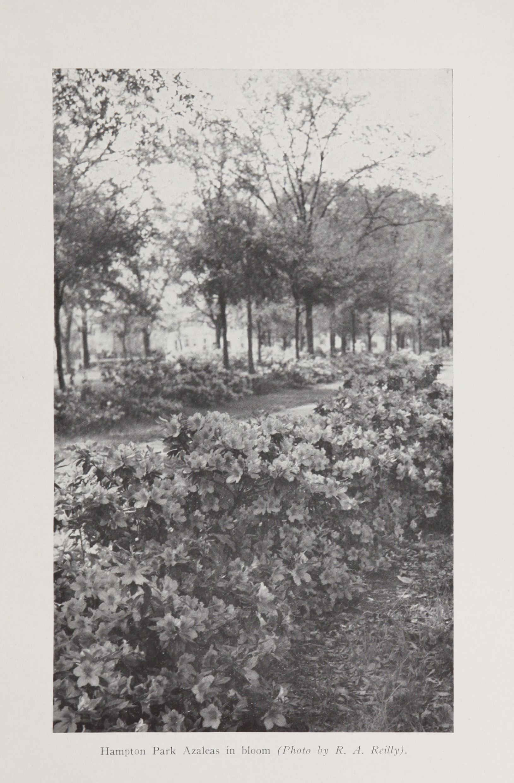 Charleston Yearbook, 1941, photograph