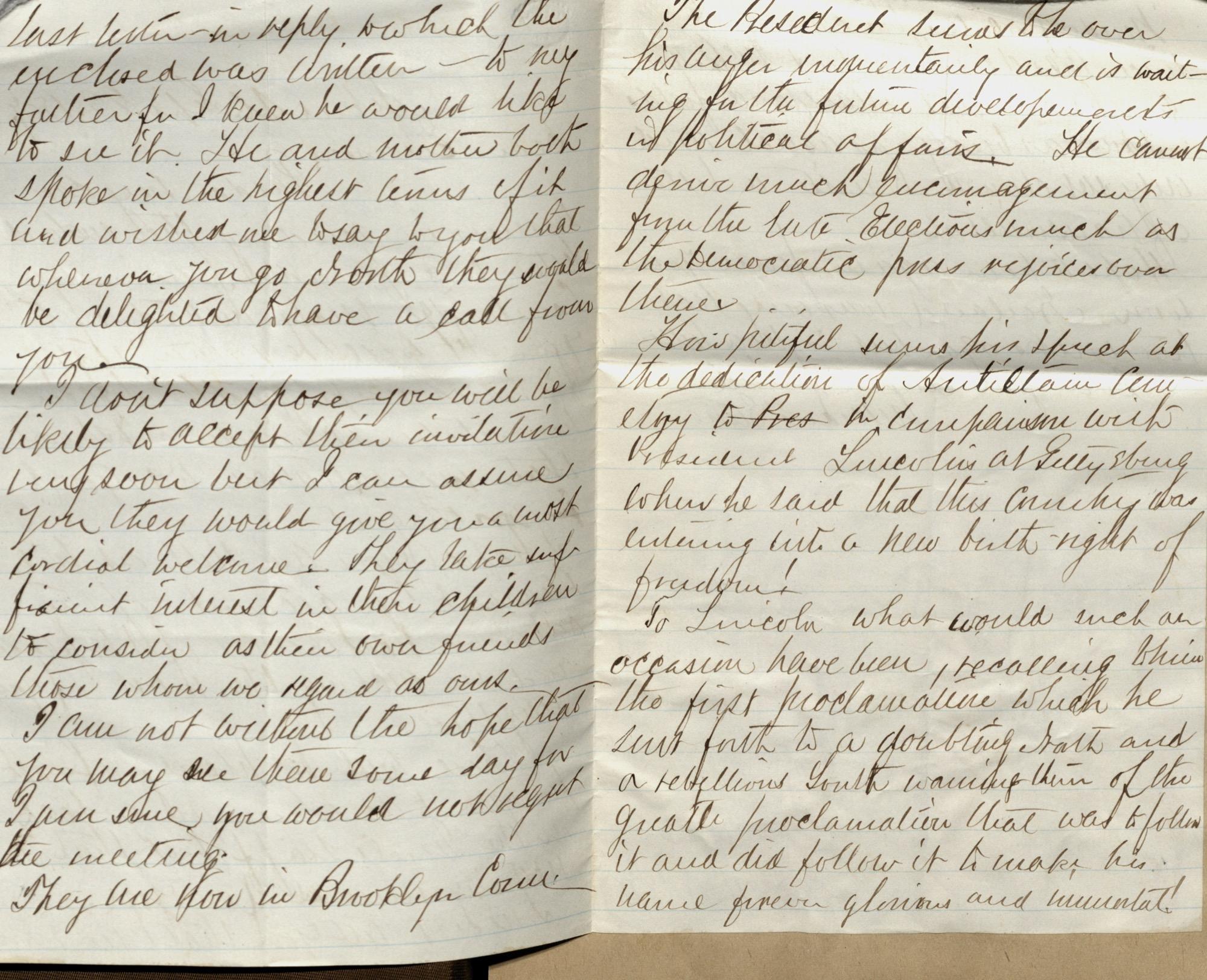 Erastus Everson Diary 1861-1893, page 219