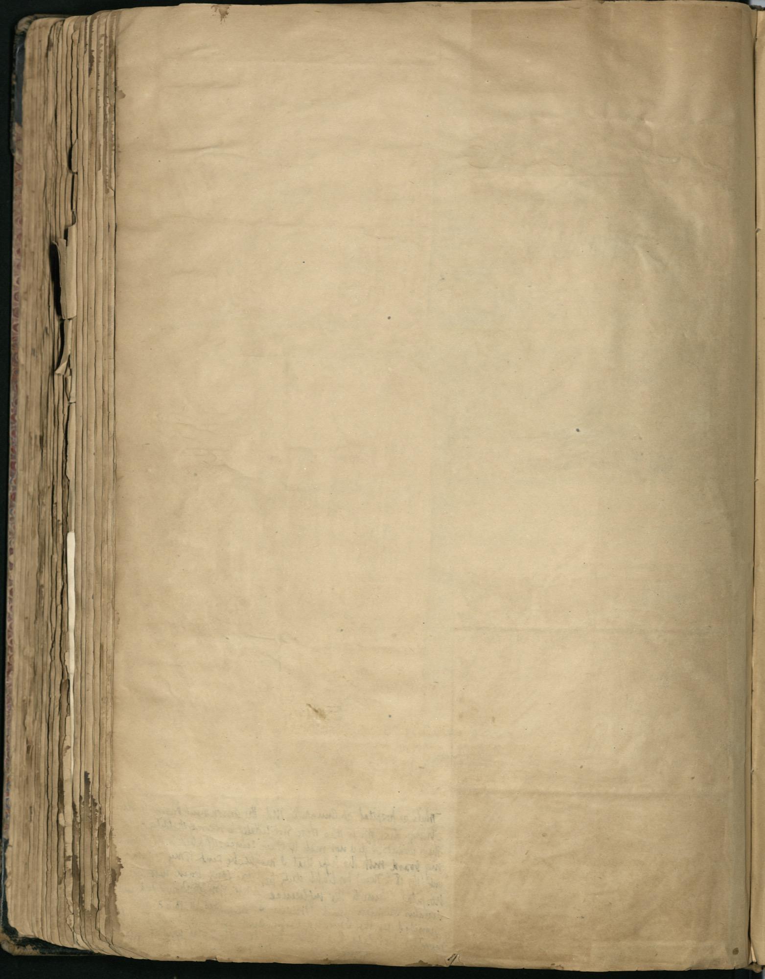 Erastus Everson Diary 1861-1893, page 242