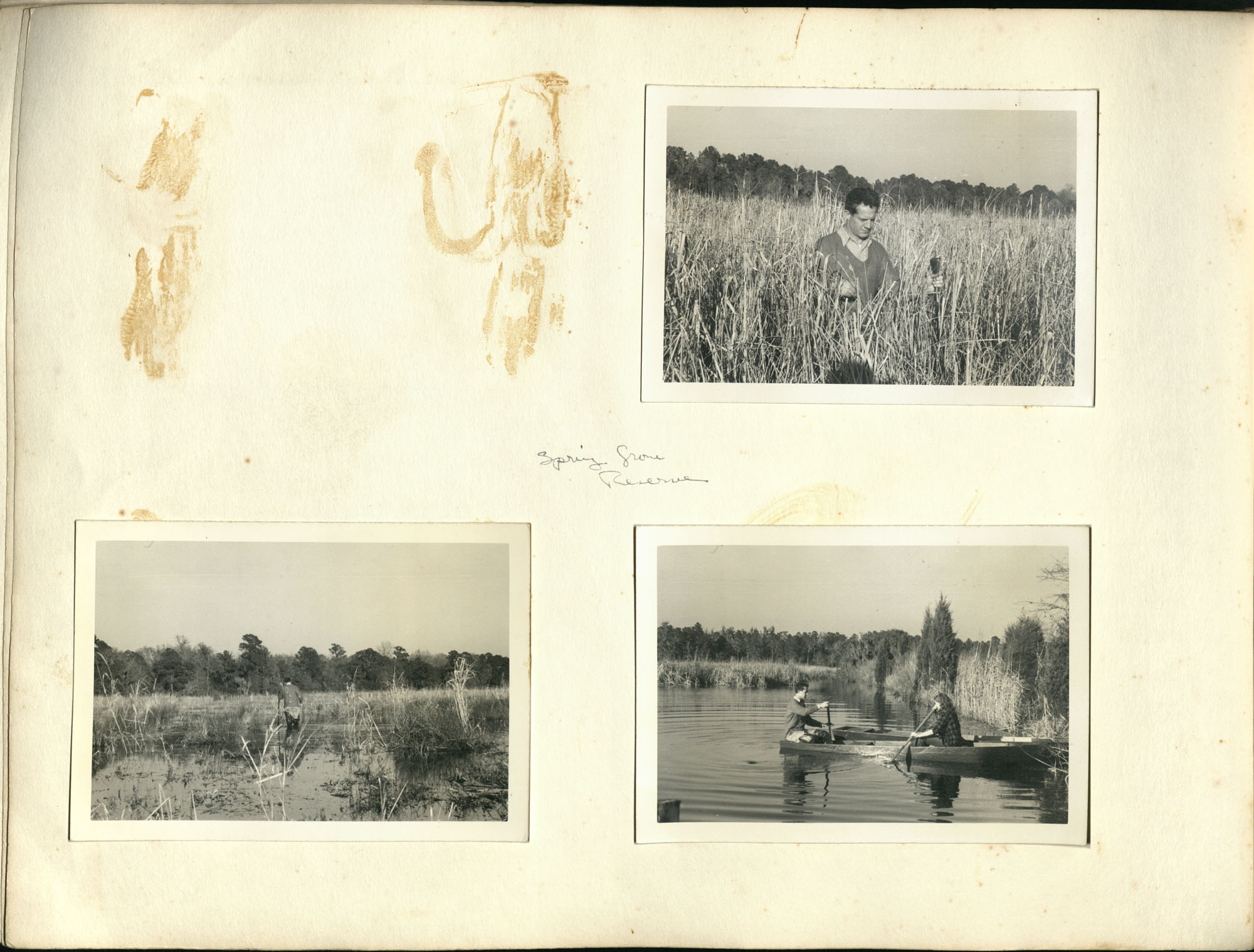 Medway Plantation Photograph Album, 1949, page 116