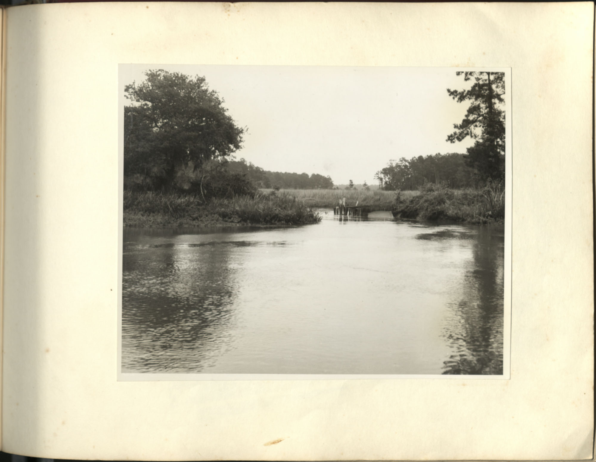 Medway Plantation Photograph Album, 1949, page 139