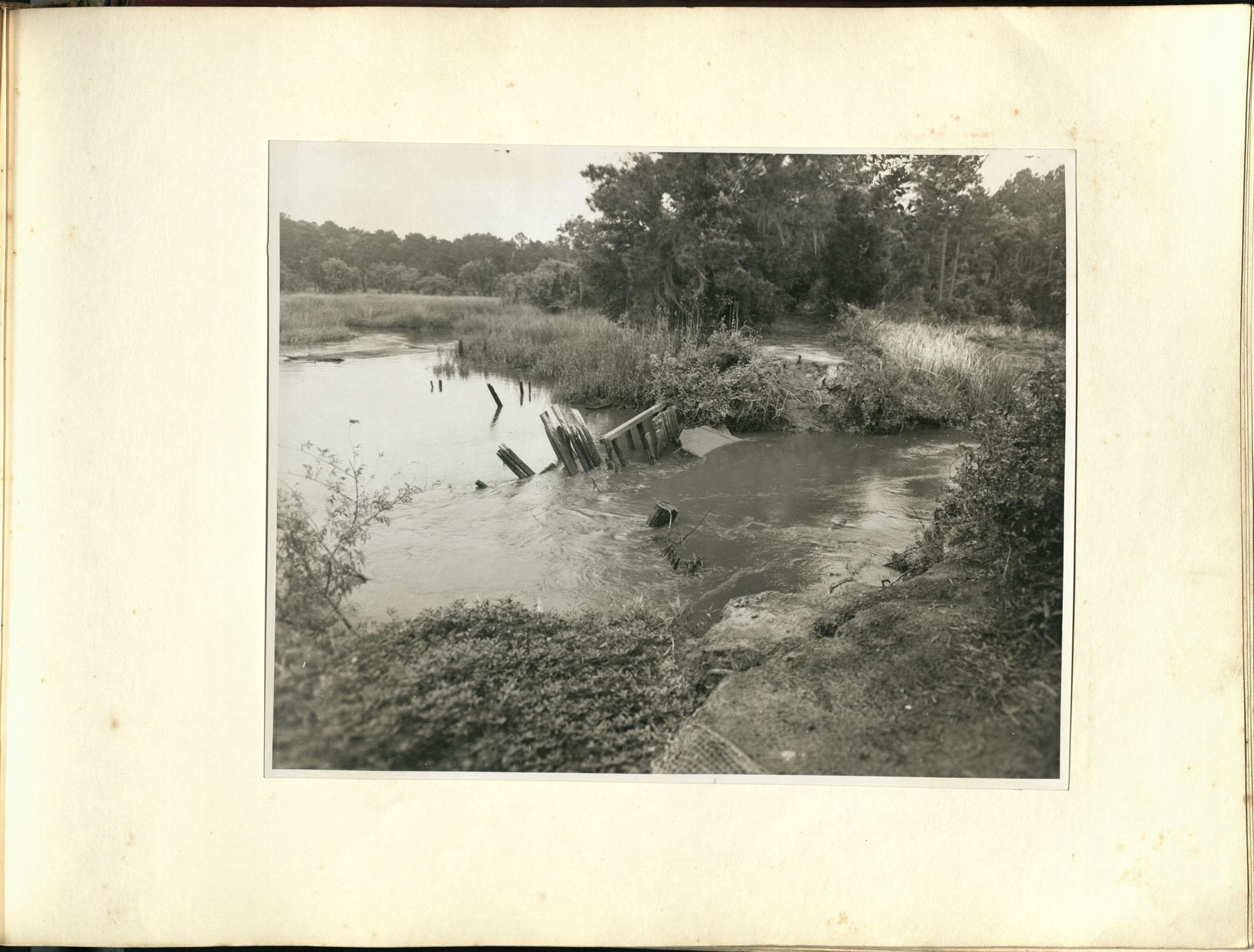 Medway Plantation Photograph Album, 1949, page 141