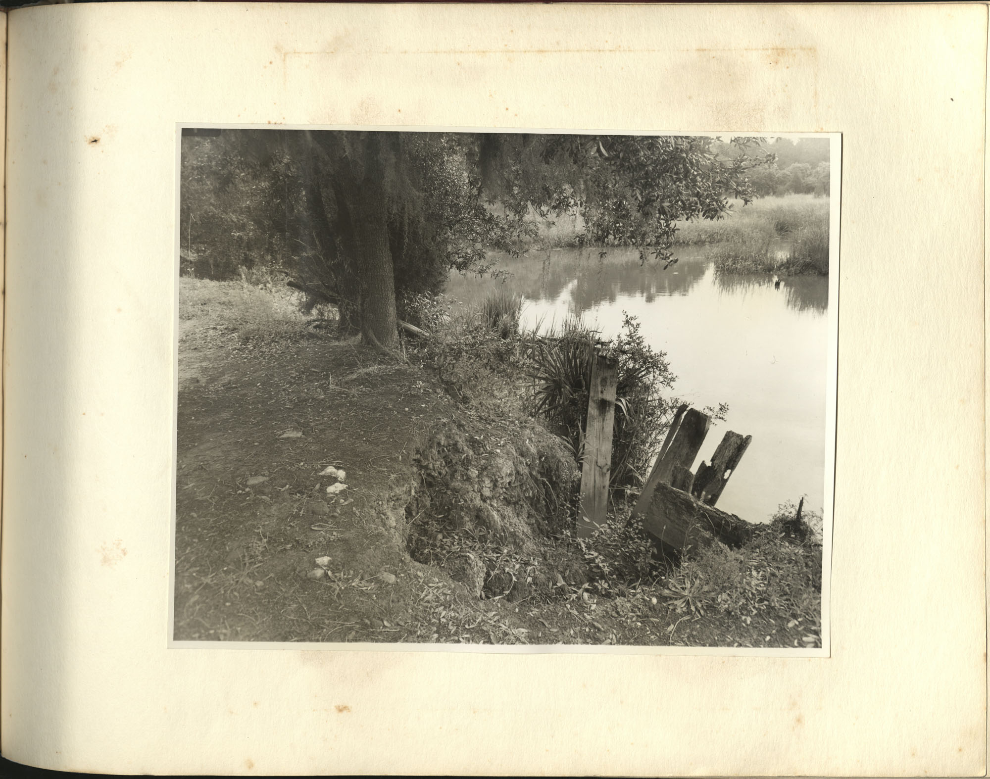 Medway Plantation Photograph Album, 1949, page 145
