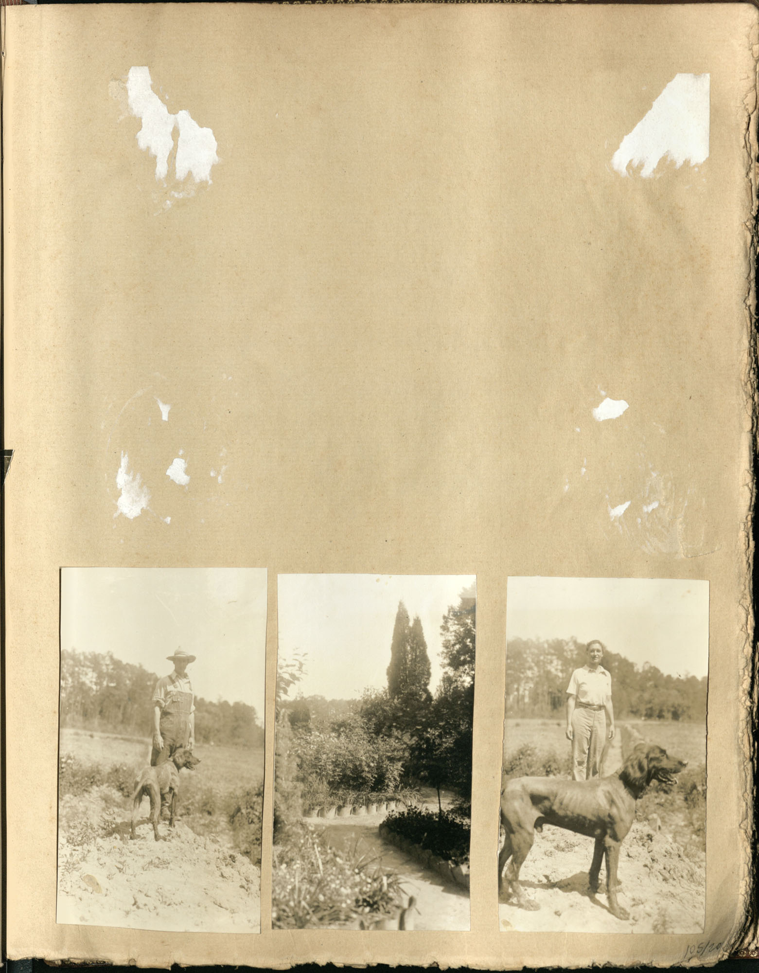 Early Medway and travels album, 1929-1937, page 105