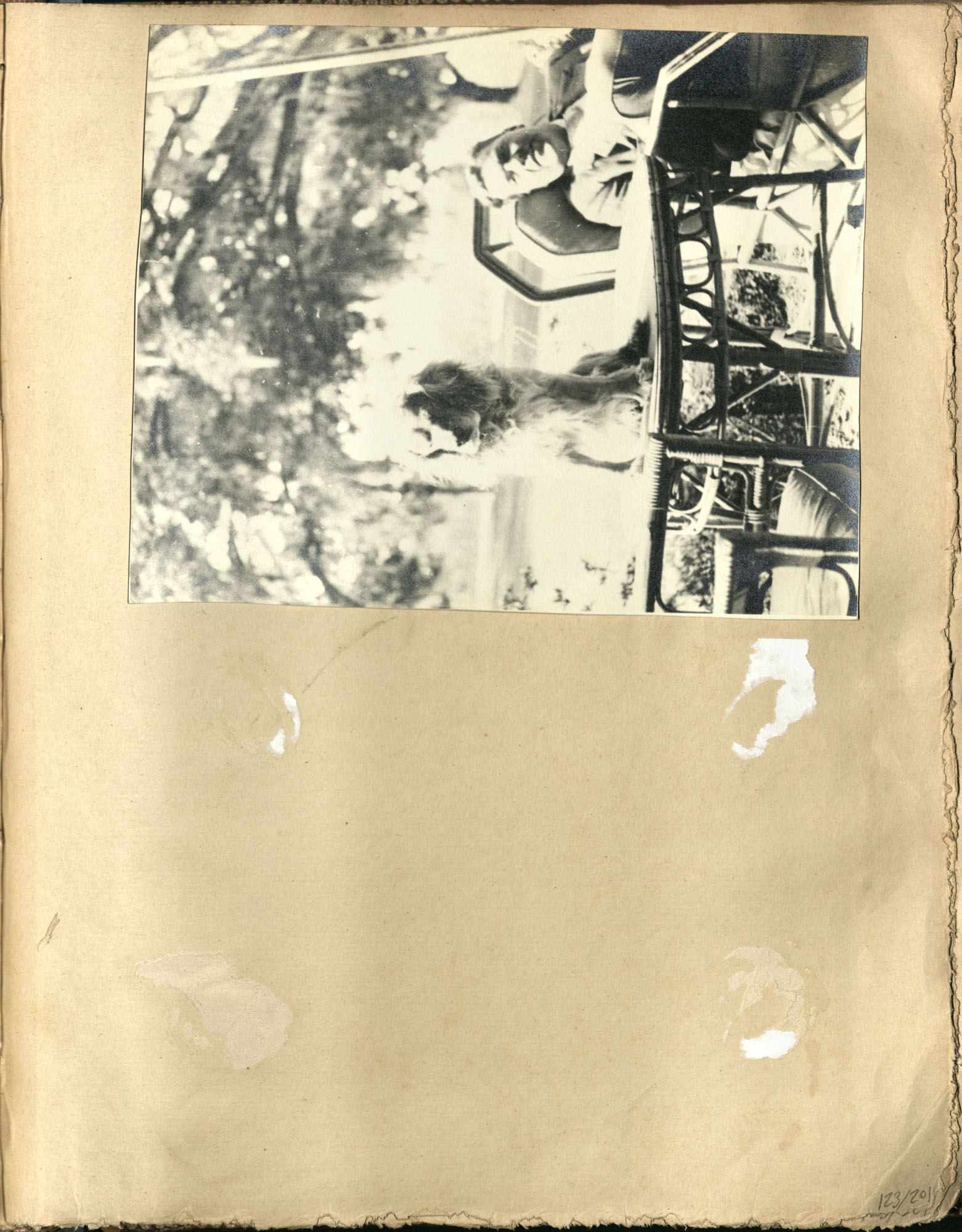Early Medway and travels album, 1929-1937, page 123