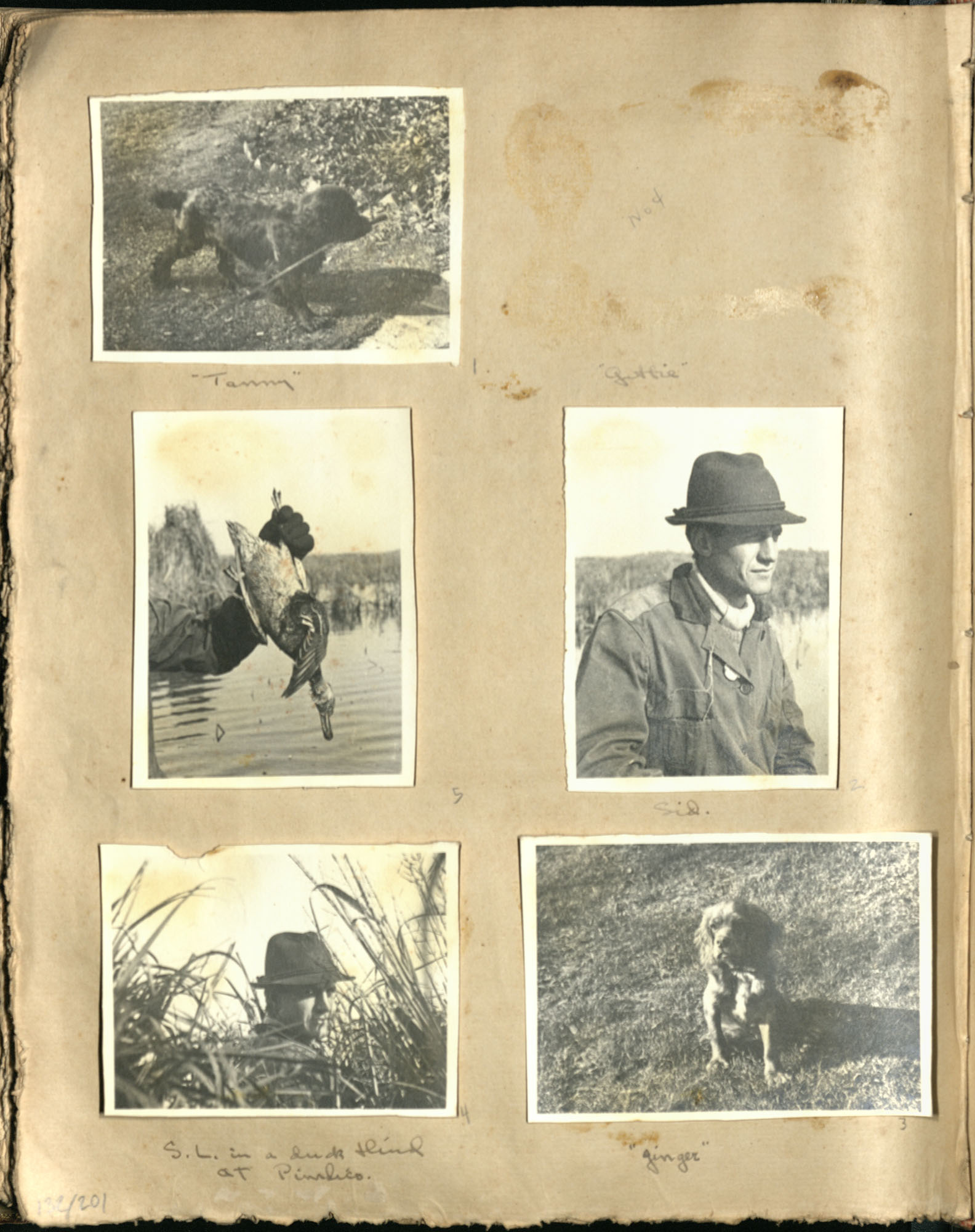 Early Medway and travels album, 1929-1937, page 132