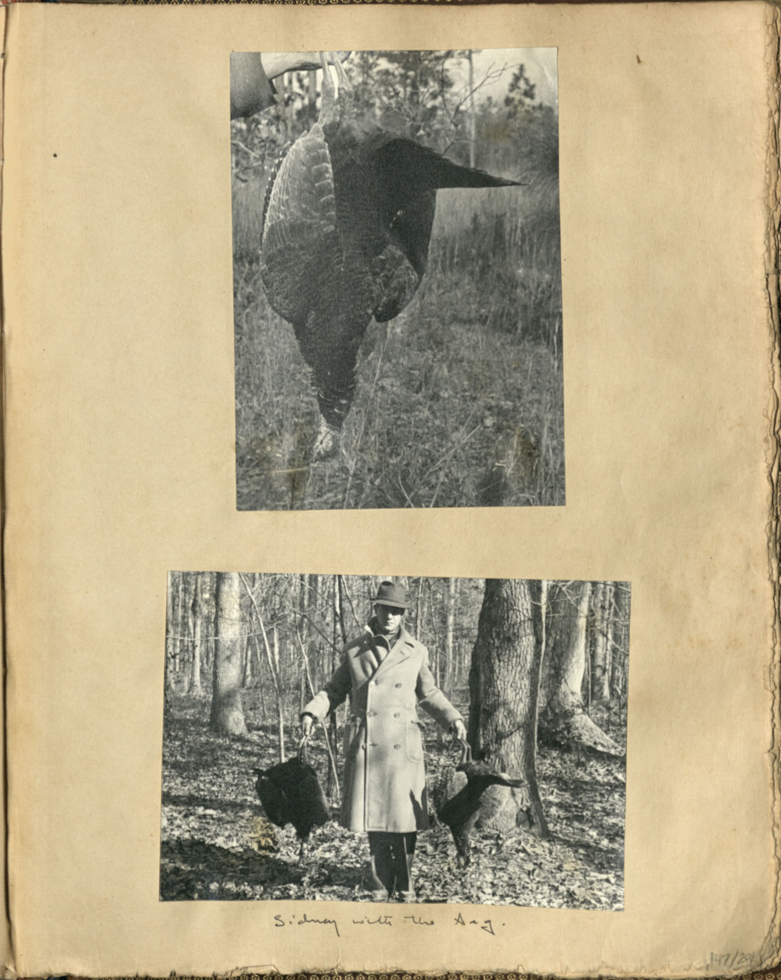 Early Medway and travels album, 1929-1937, page 147