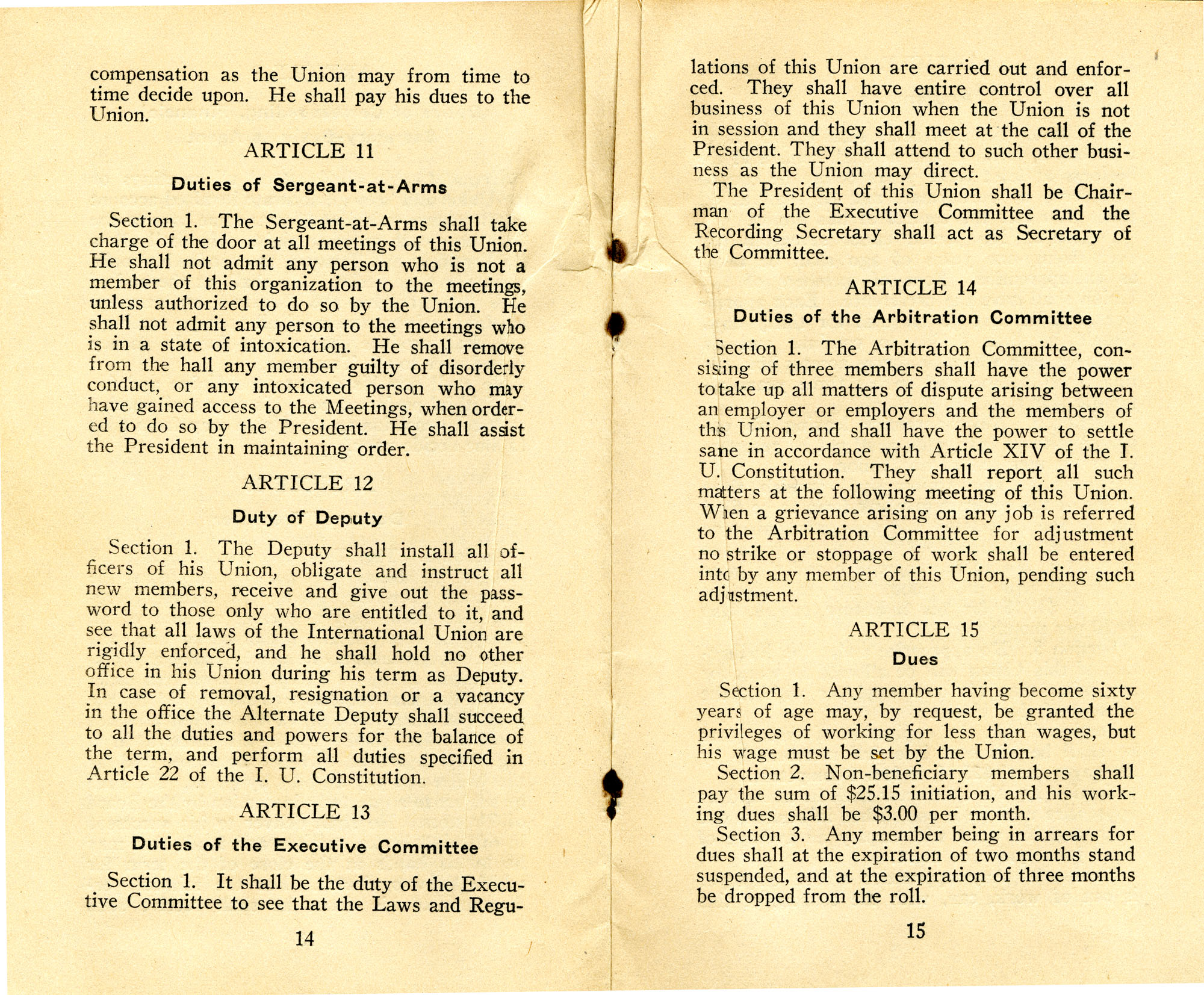 Constitution, by-laws, working code and rules of order, Page 8