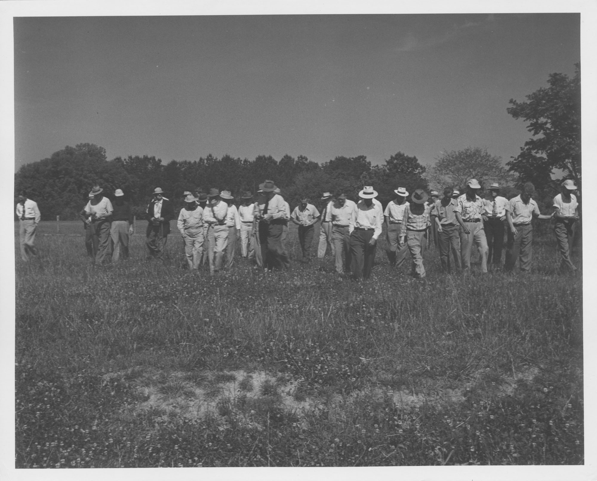Photograph of Men Moving Through the Pasture