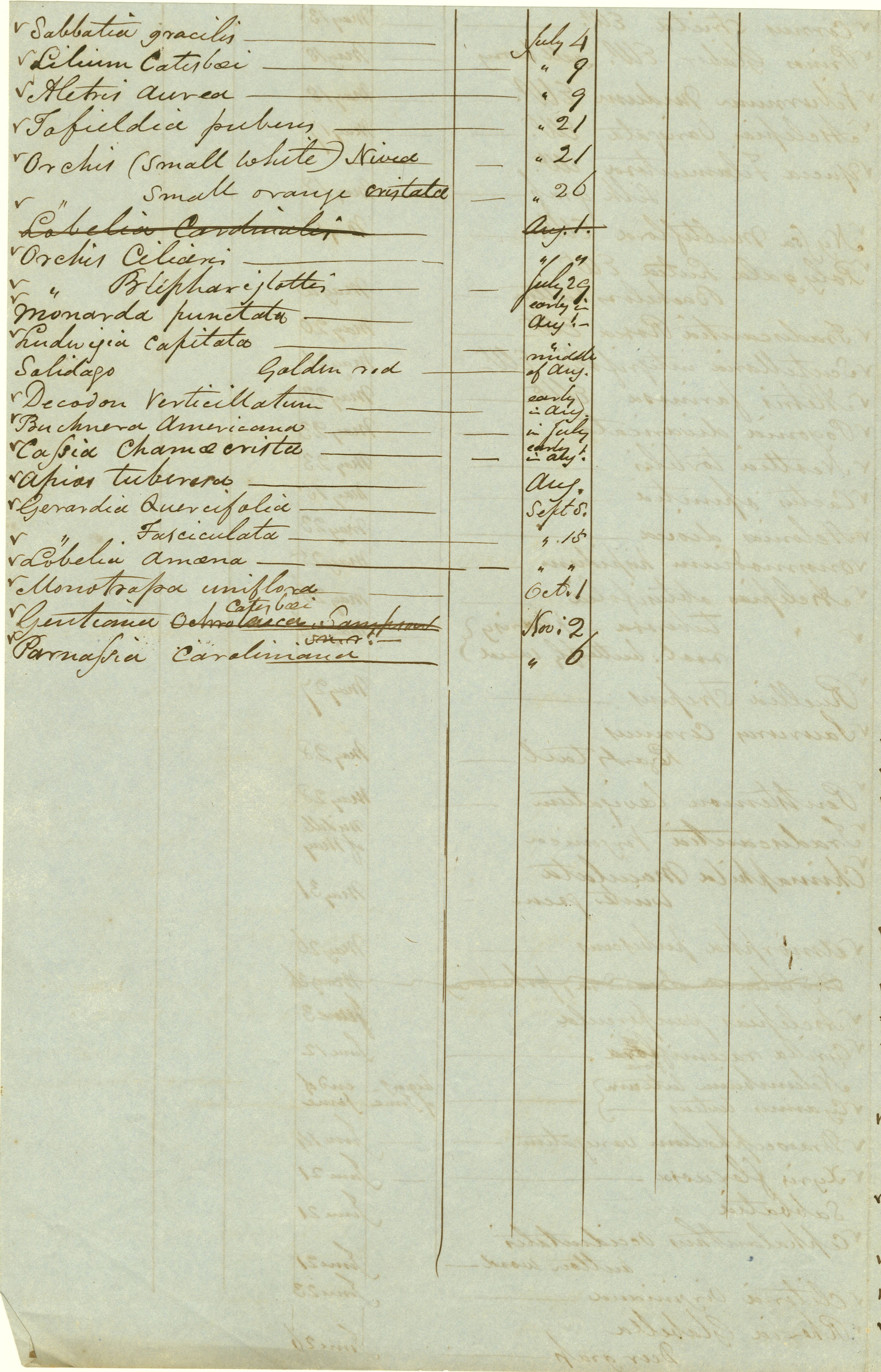 Gardening Record, 1855, page 4