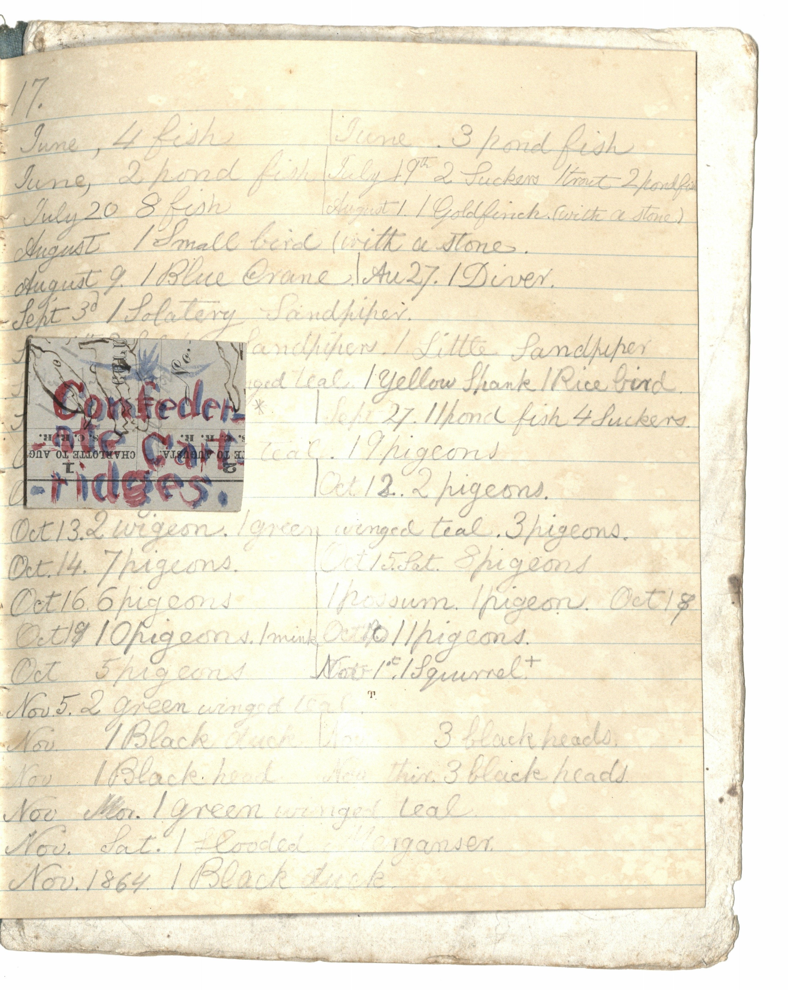 Langdon Cheves III Hunting Notes & Art, Page 18