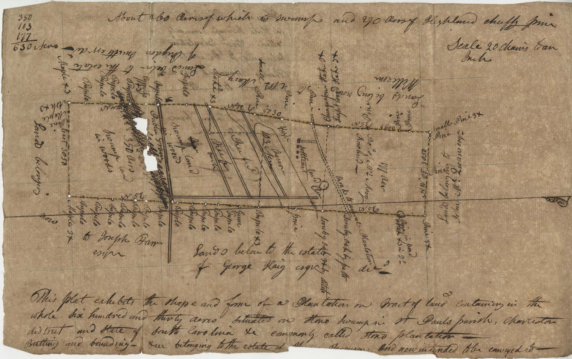 Plat on Stono Swamp 1793