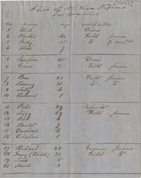 117. List of Fife Plantation Negroes -- 1851