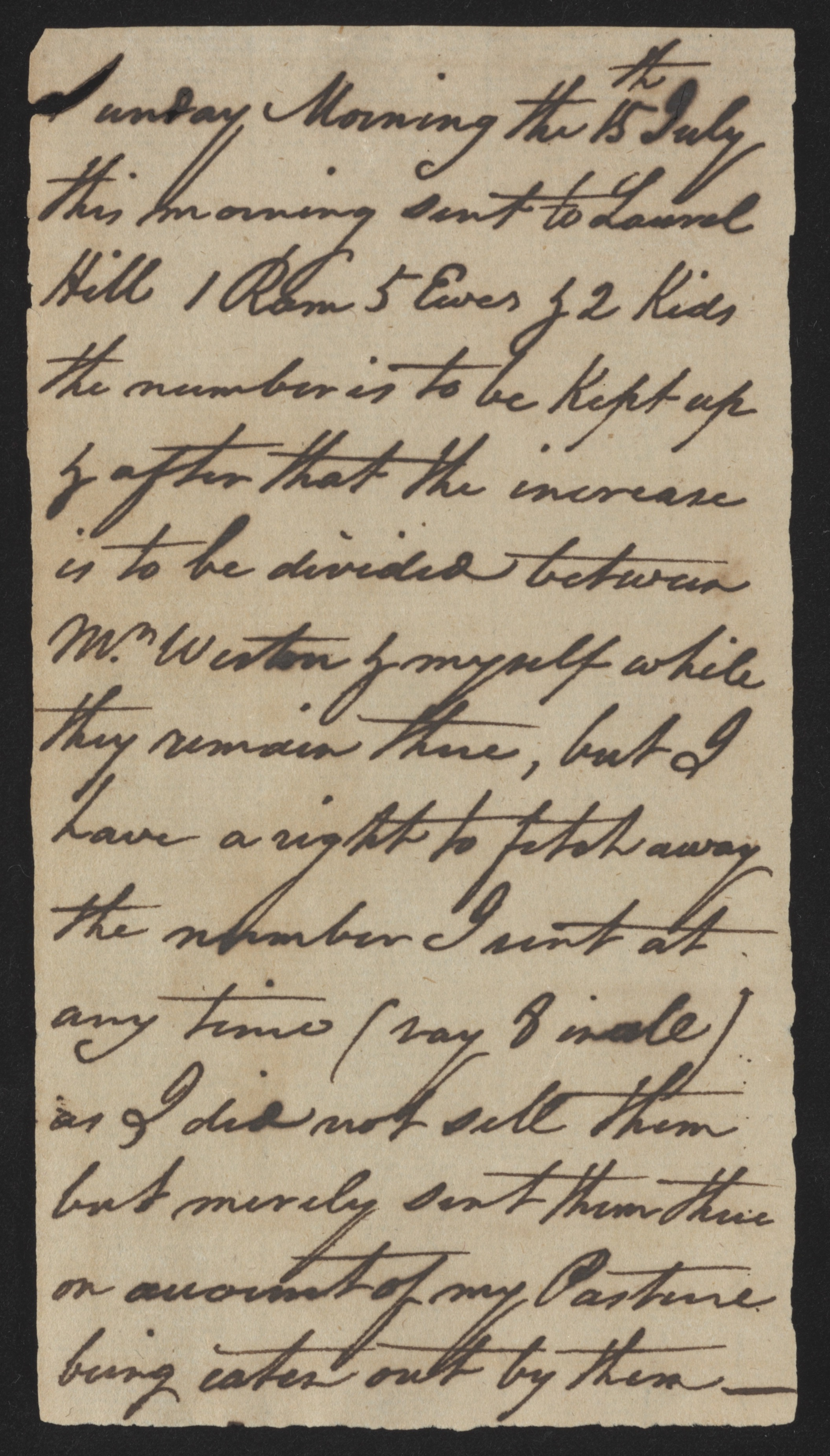 Sandy Island Plantation Journal, Volume 1, 1792, Page 17