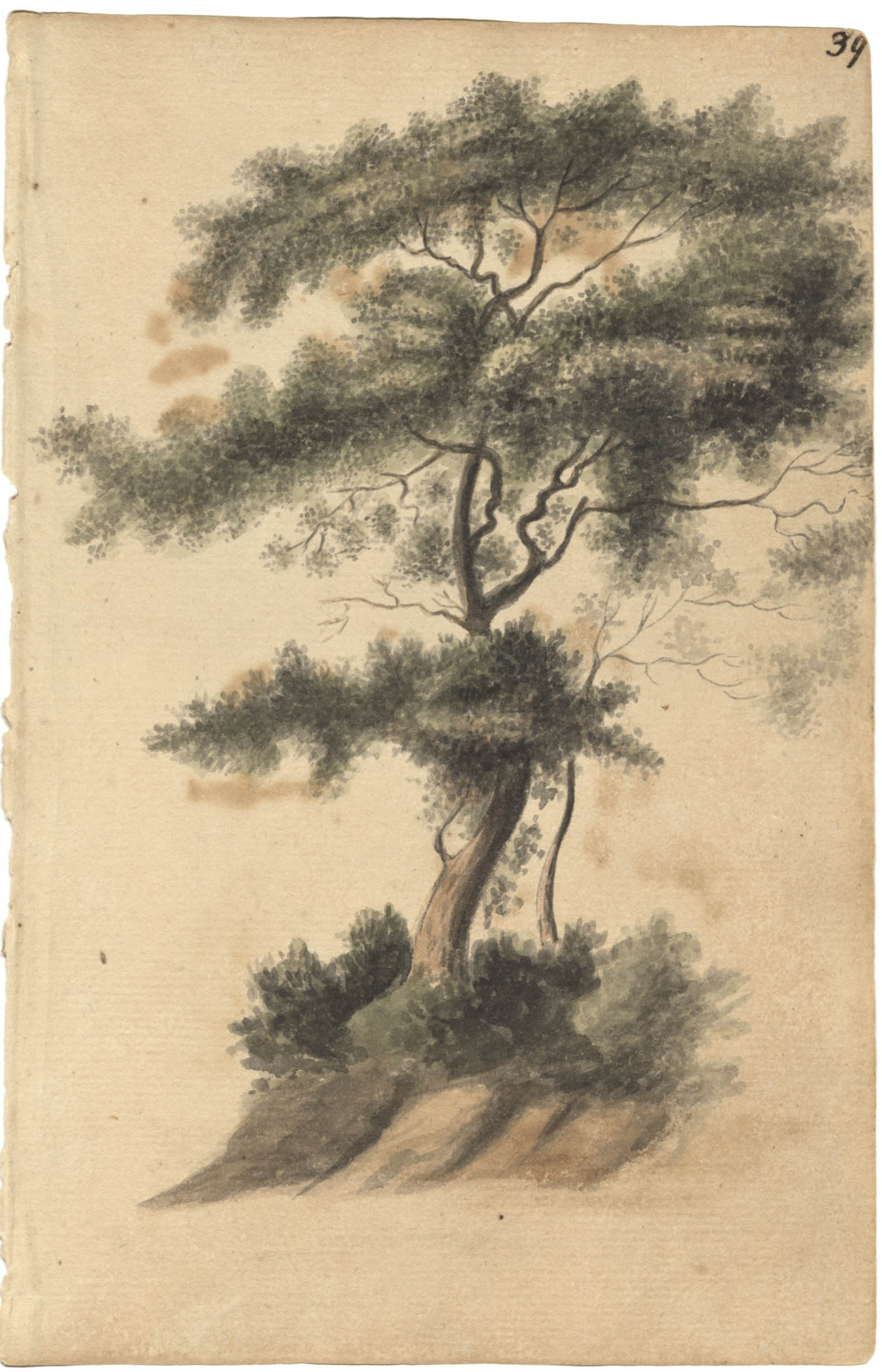 Landscape painting, tree on bluff