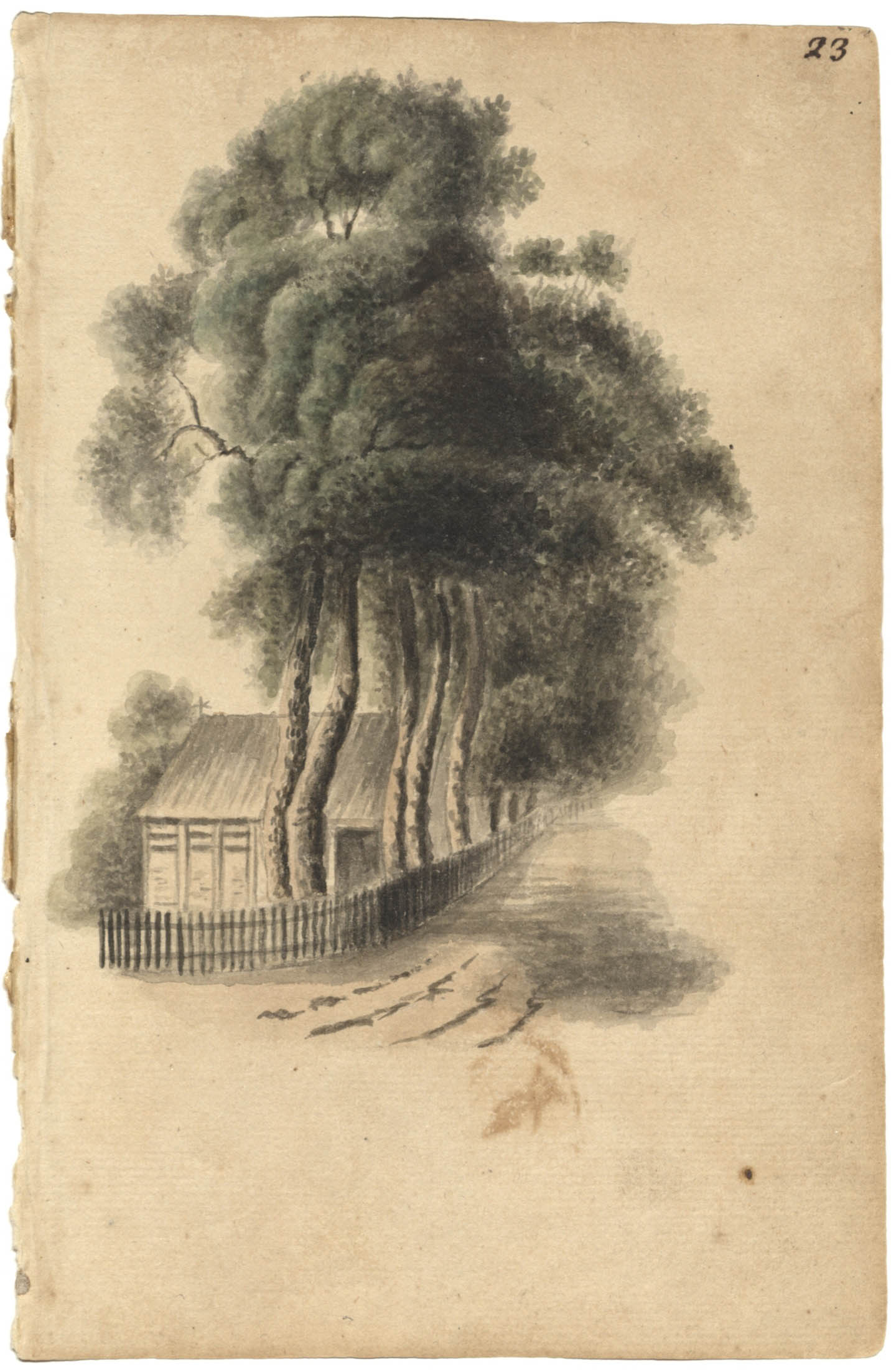 Sketch of cottage and tree-lined road