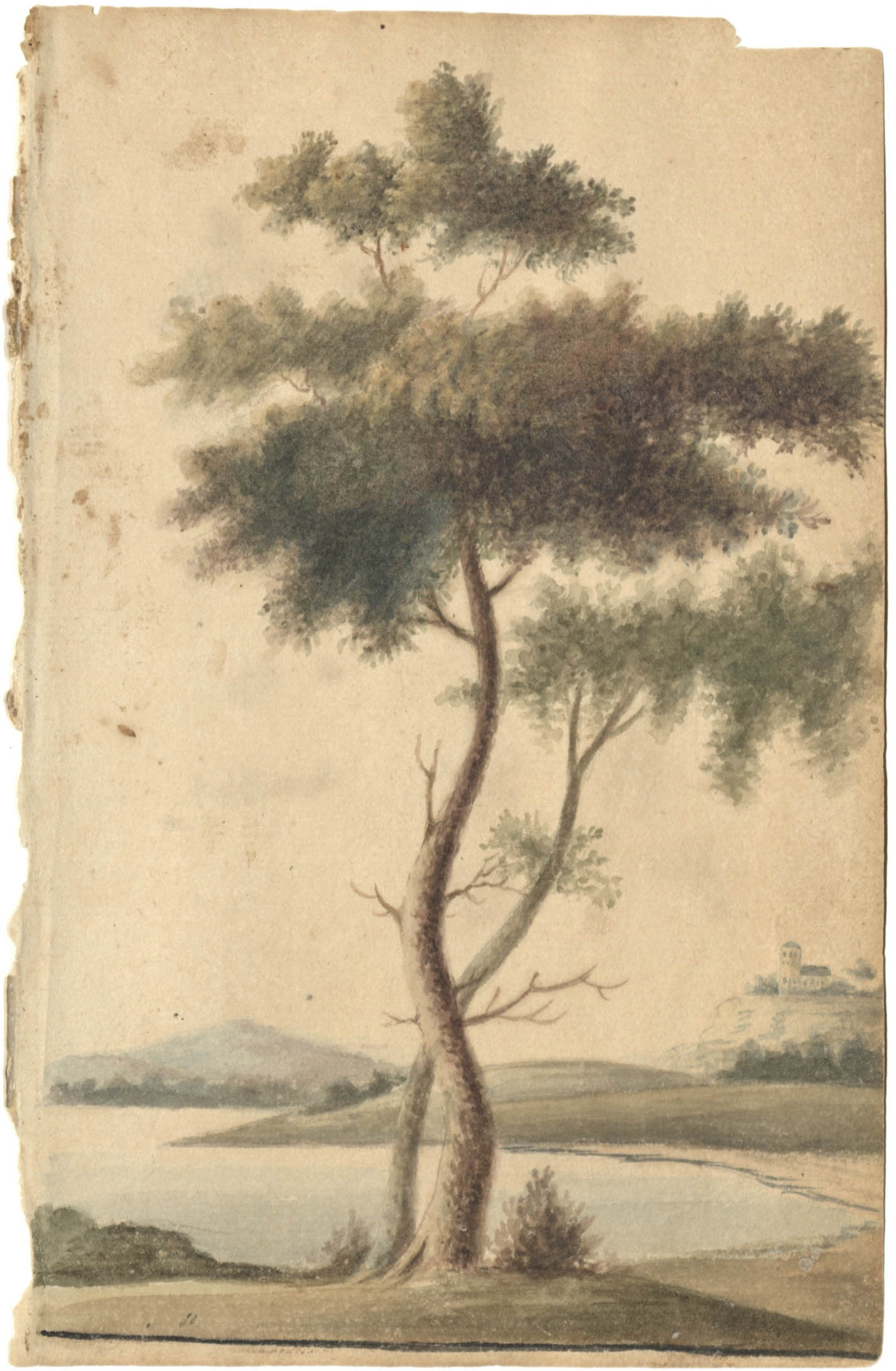 Landscape sketch of trees and castle