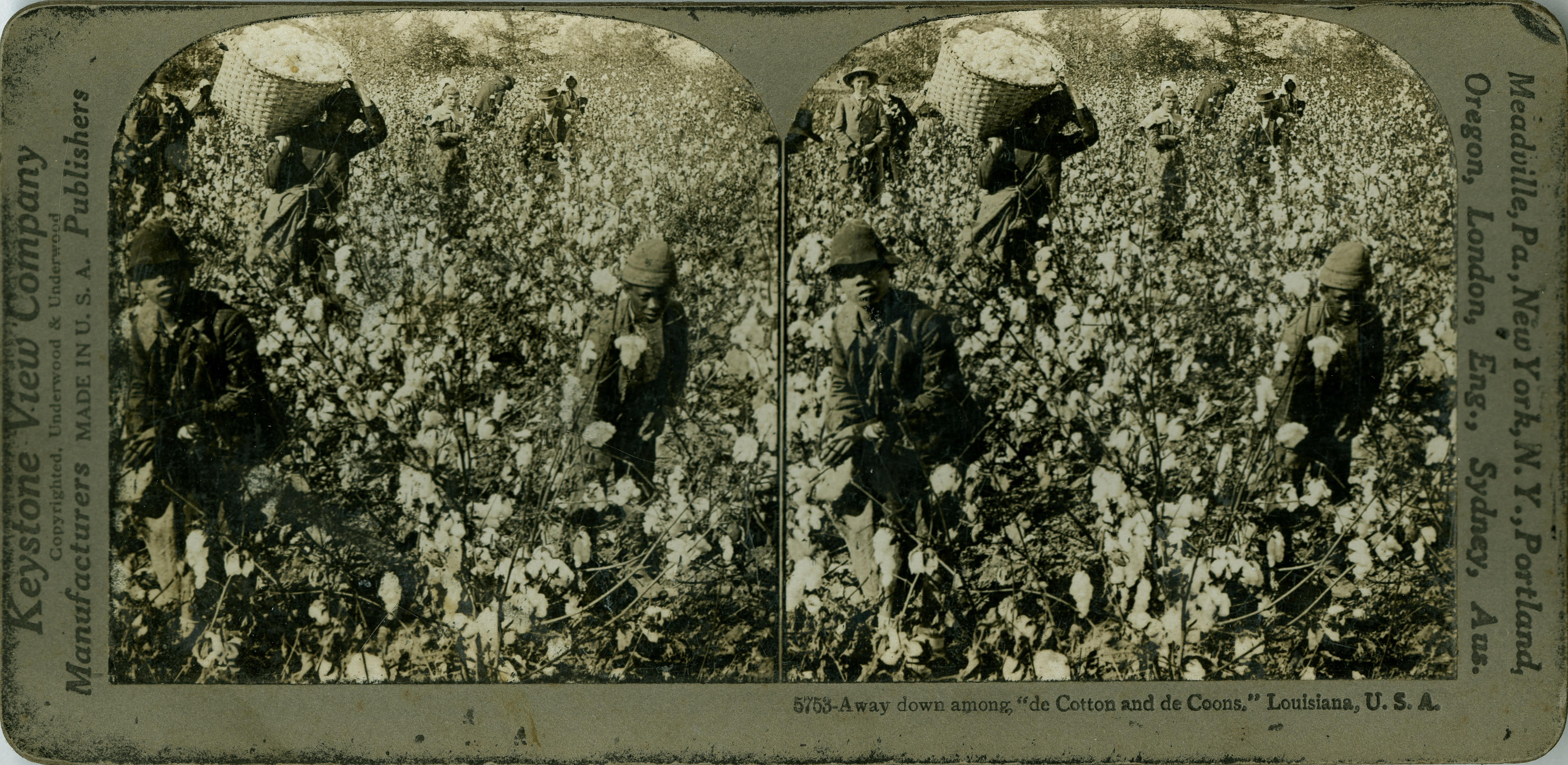 Away down among de cotton