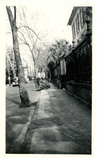 View on Legare Street