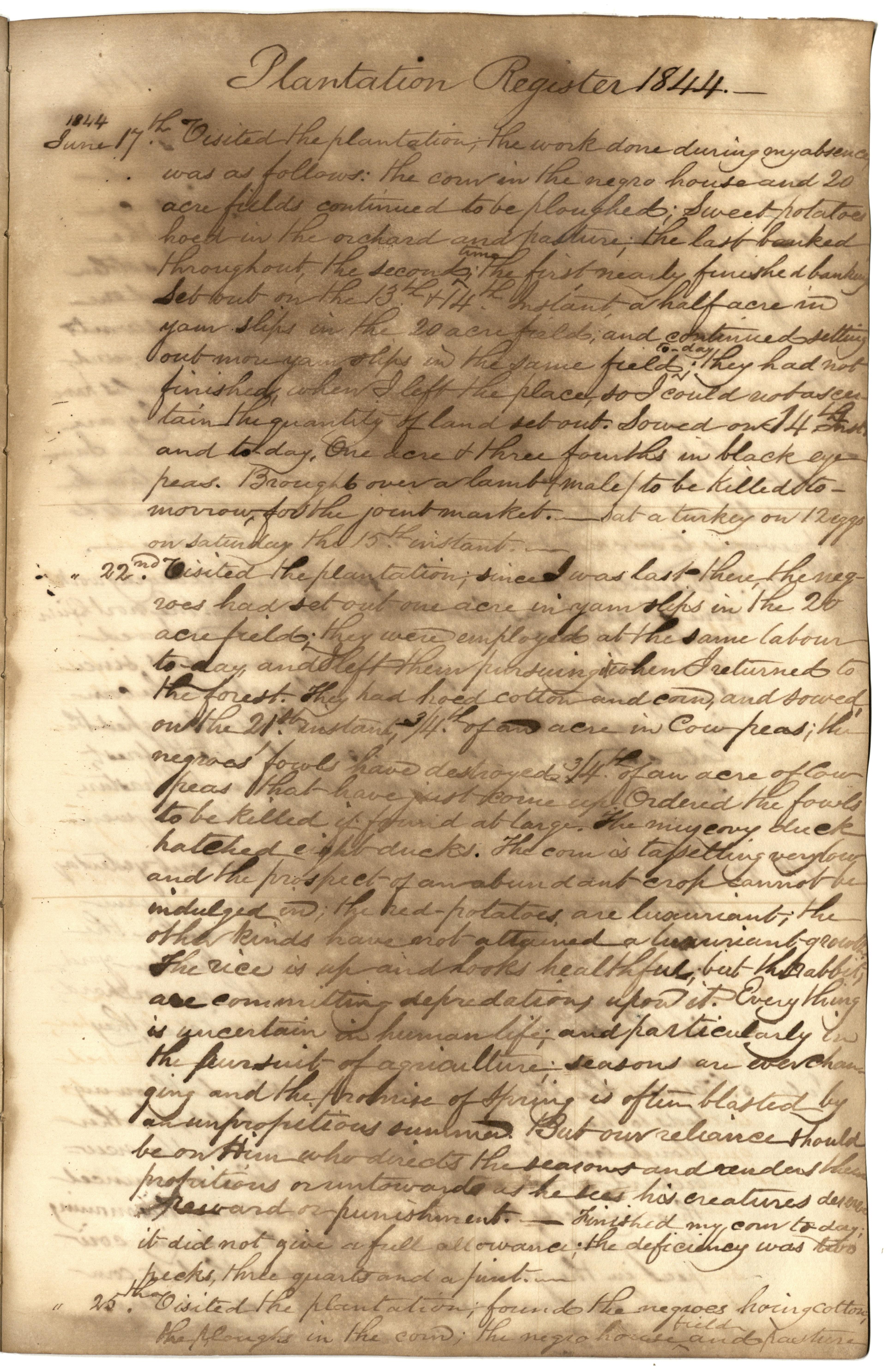 Gibbs Plantation Register, Page 105
