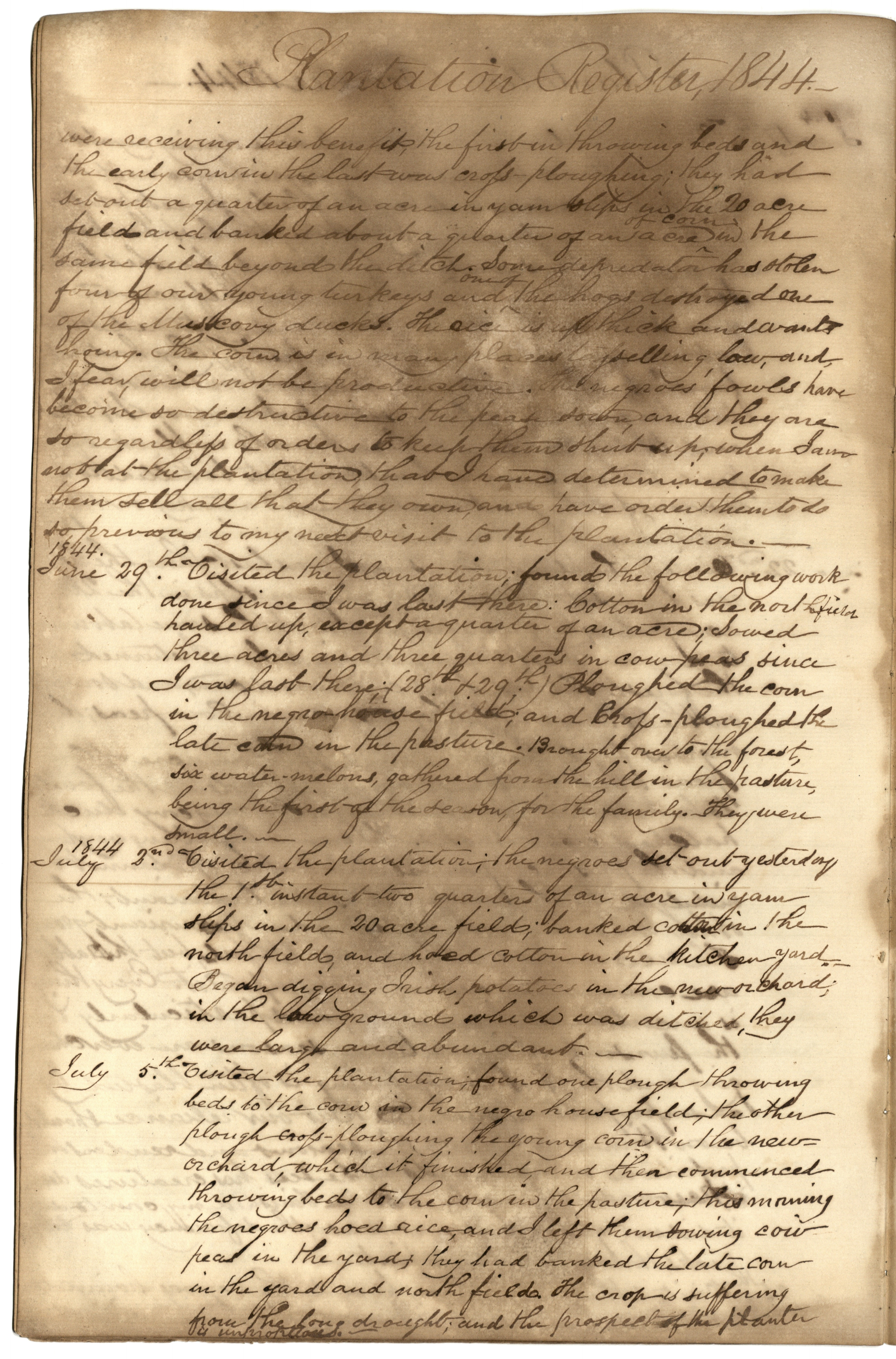 Gibbs Plantation Register, Page 106