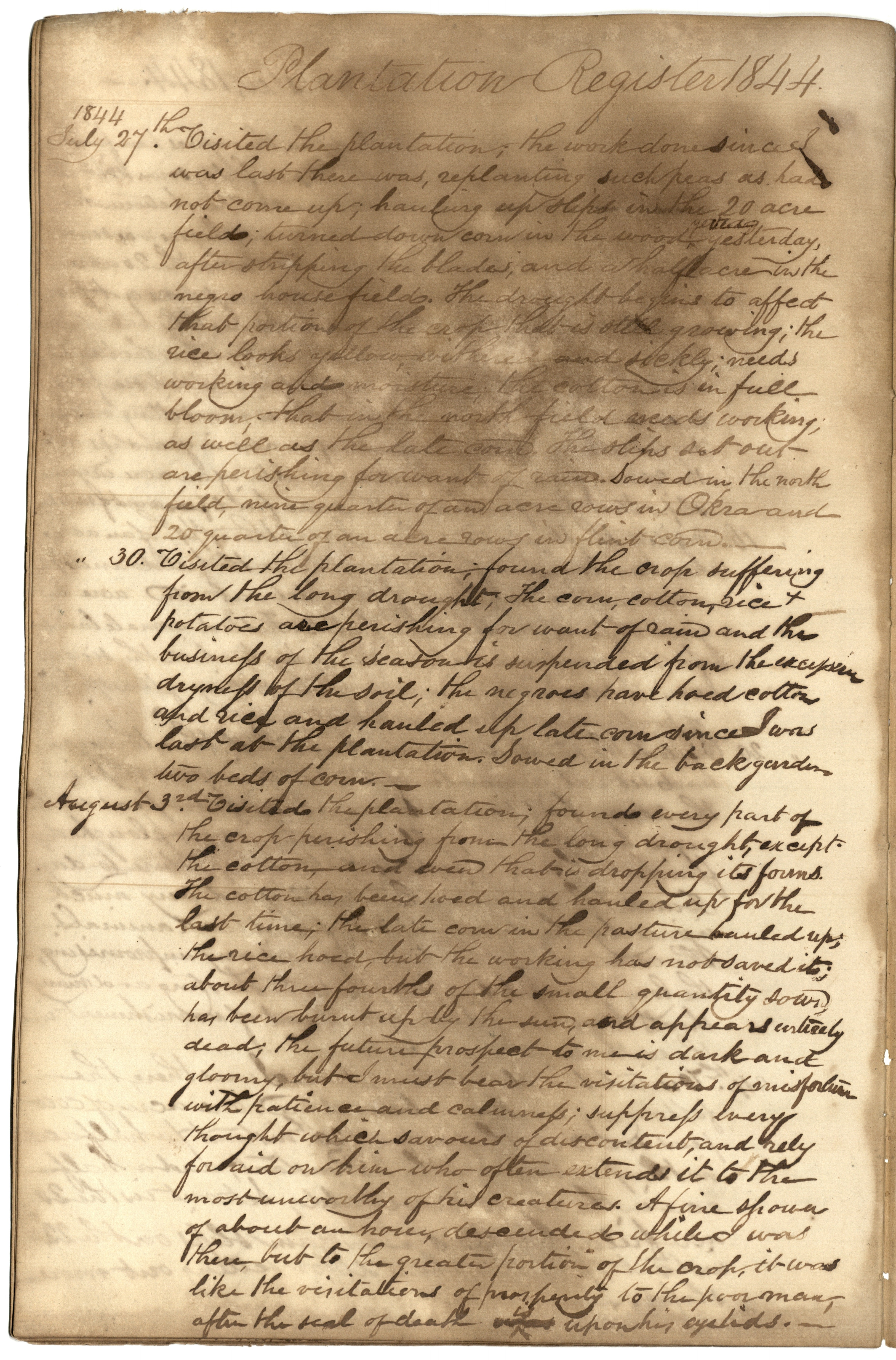 Gibbs Plantation Register, Page 108