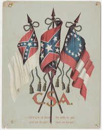 225. Confederate flags -- n.d