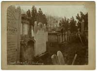 Israel. Friedhof - Währing