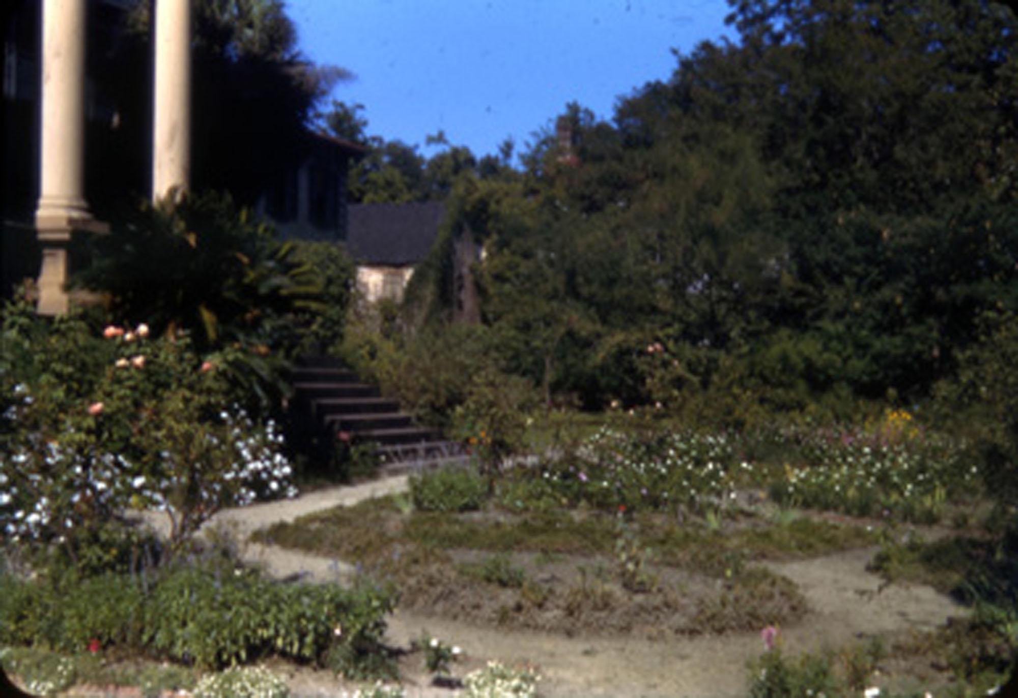 Garden, Main Library