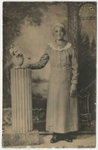 Postcard of Victoria Poinsette