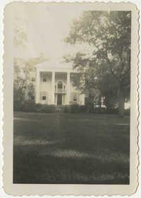 McLeod Plantation 1950