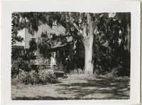 Plantation Residence