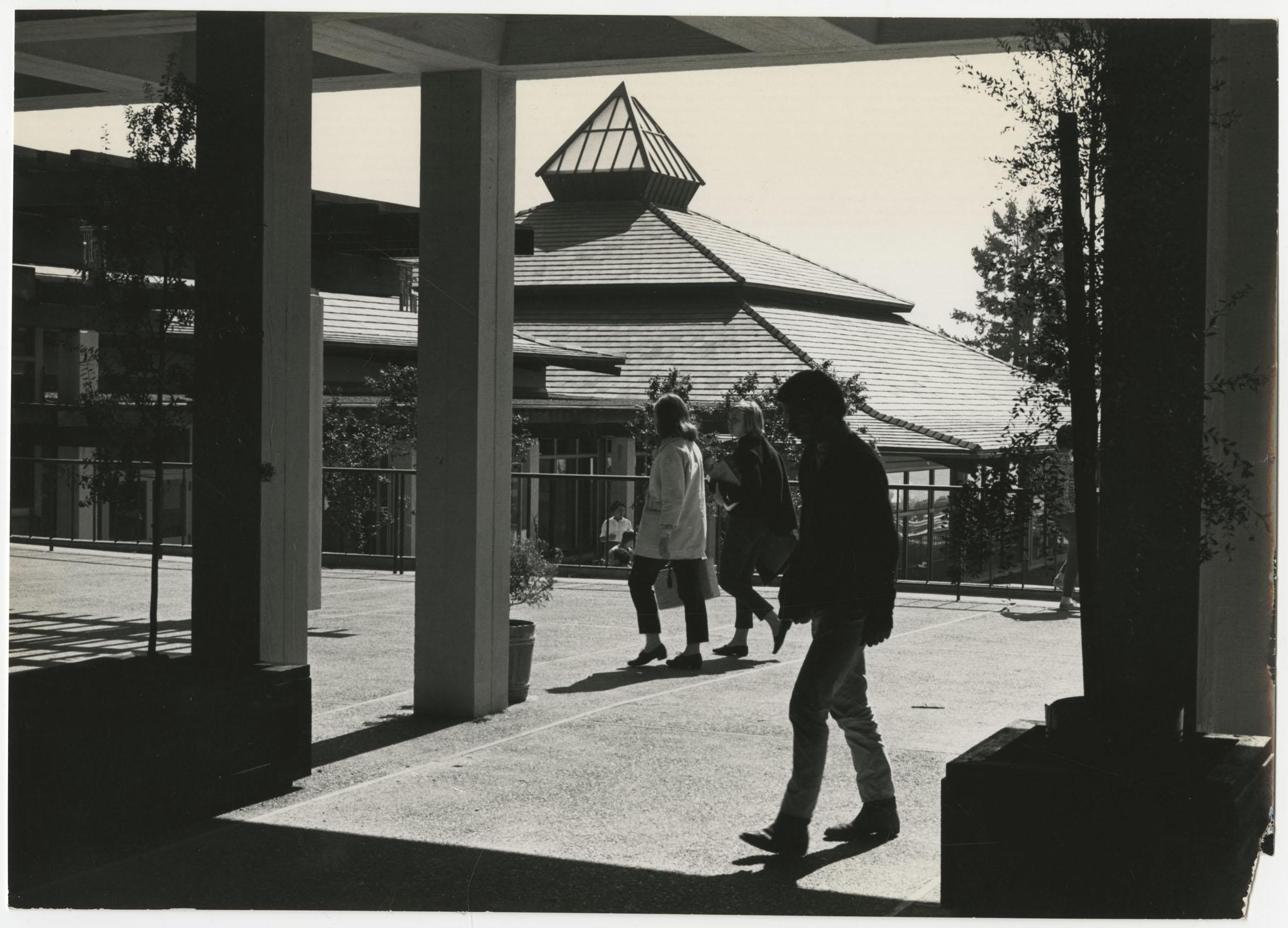 Students Walking on University of California, Santa Cruz Campus