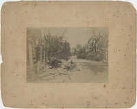 1893 Hurricane Damage to Bay Street, Beaufort, South Carolina