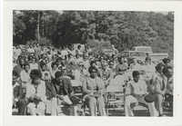 Crowd of People Seated Outdoors