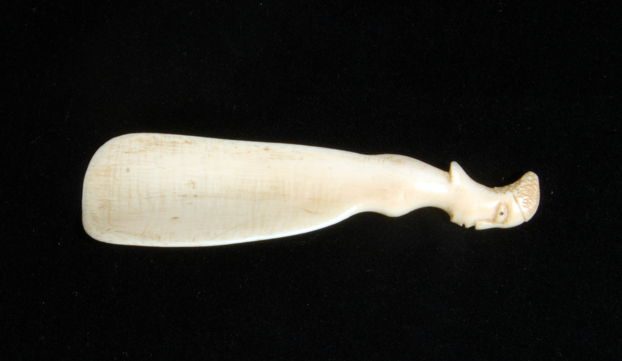 Ivory shoehorn