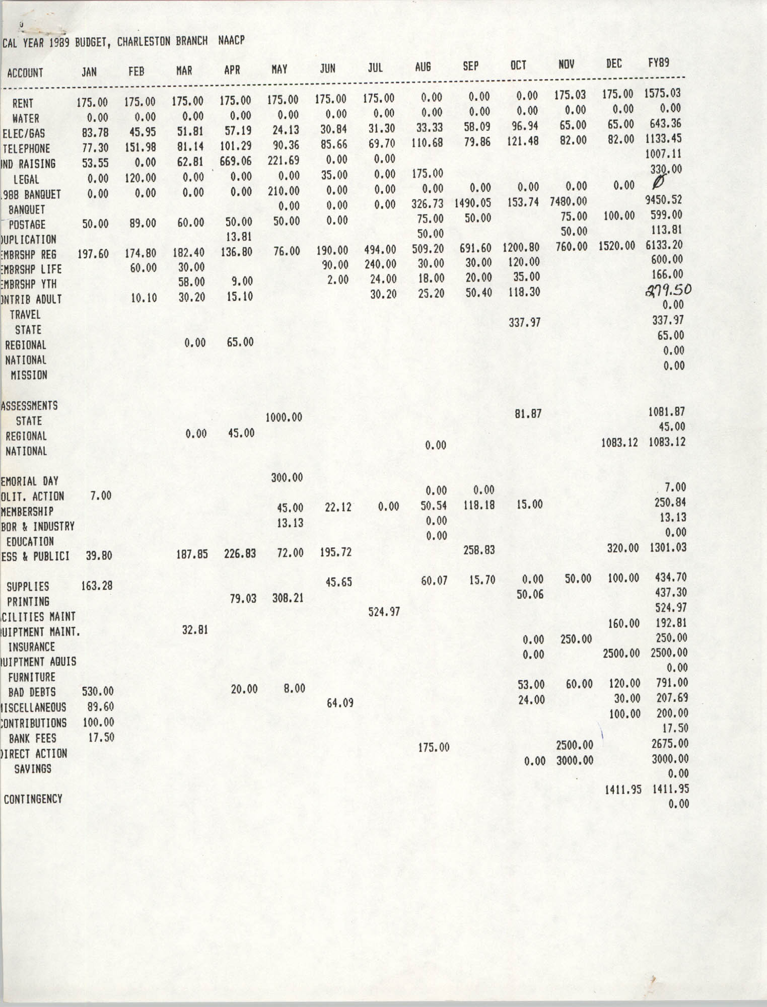 Charleston Branch of the NAACP Budget, 1989