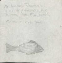 2711 West Fairbanks Avenue, Winter Park, Florida fish sketch