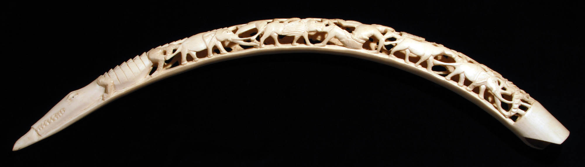 Decorative elephant tusk