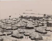 Cuban huts